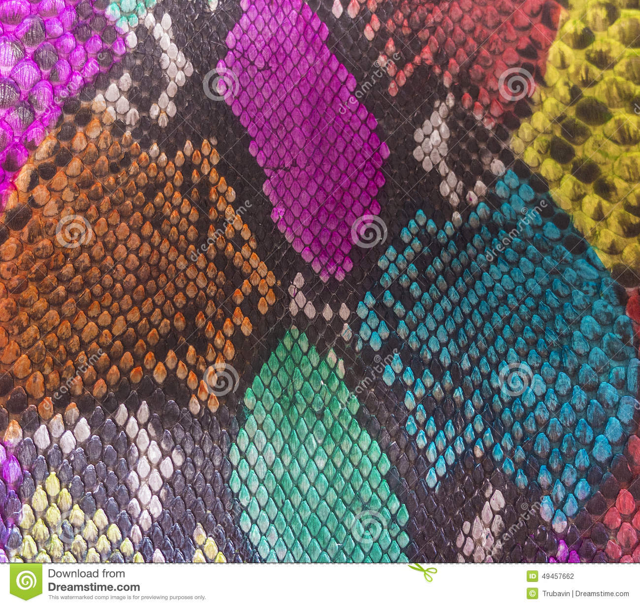 Snake Skin Texture With Colored Rhombus Geometric