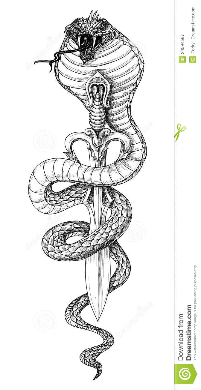 Snake Sword Stock Vector Illustration Of Element