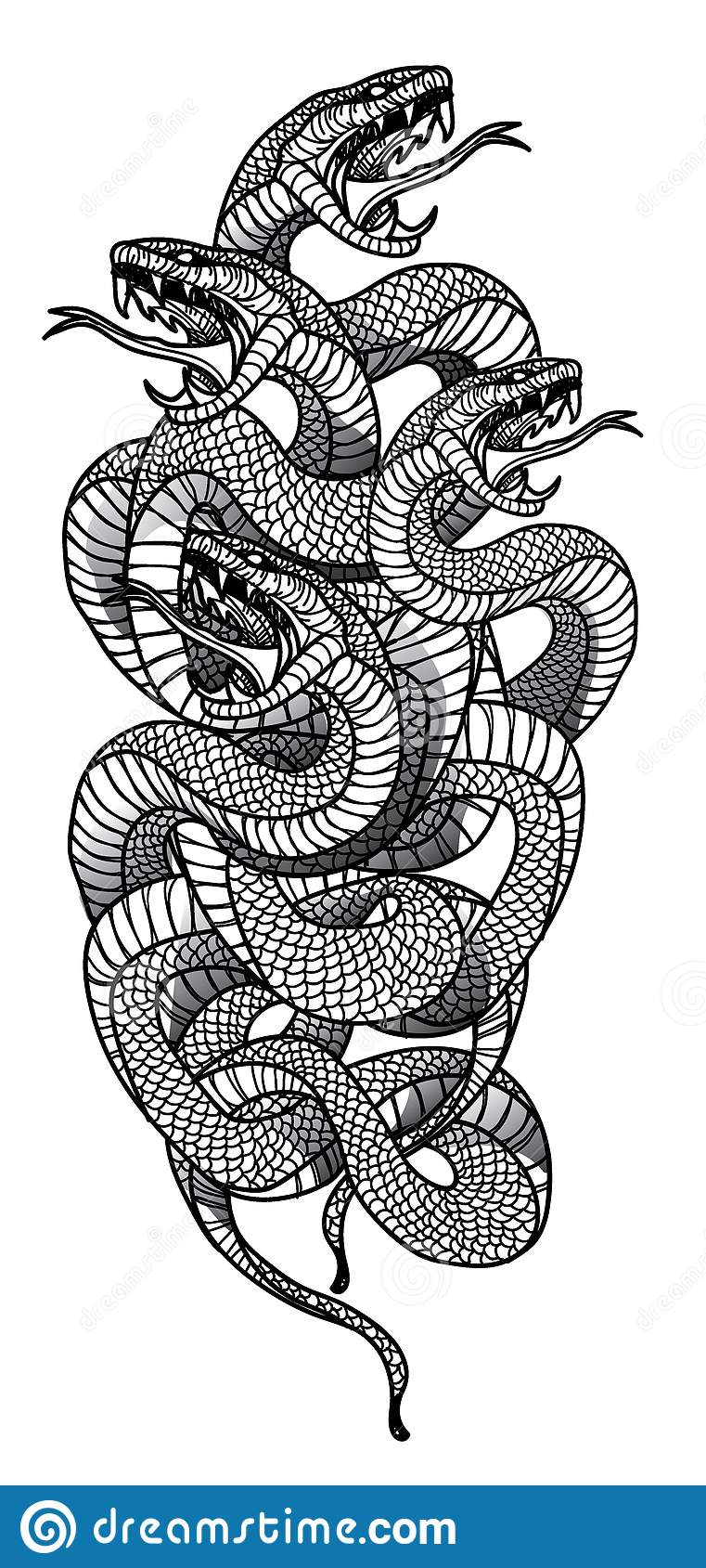 Tattoo Art Snake Hand Drawing And Sketch Black And White