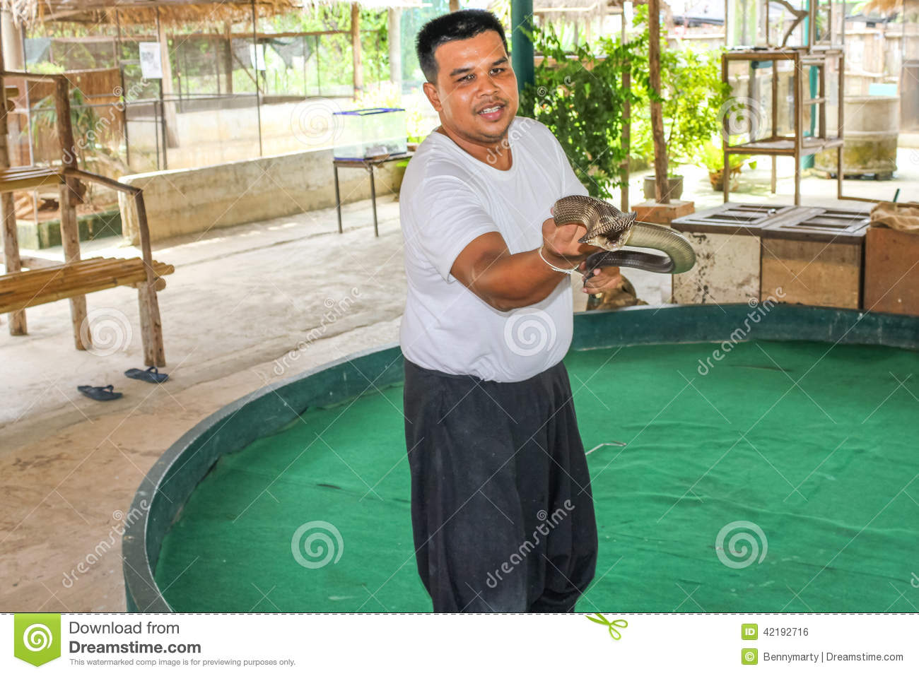 Snake Trainer Editorial Photo Image Of Asian Reptile 42192716