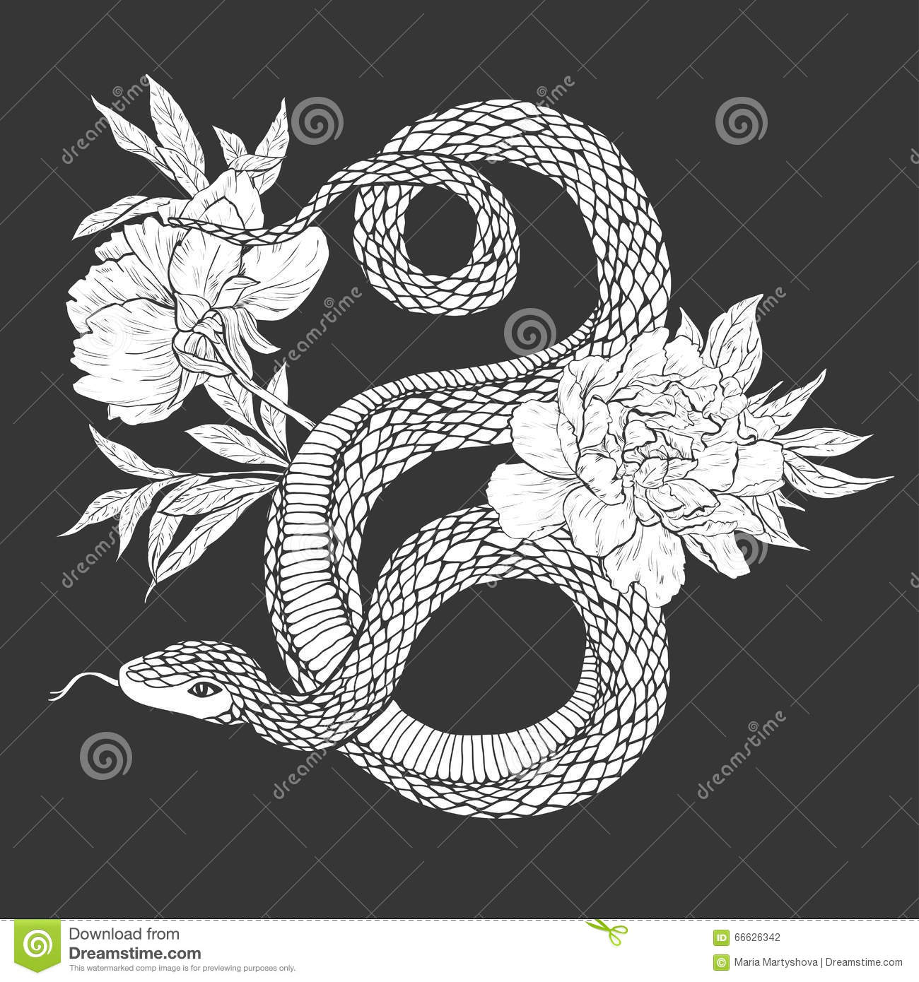 Snakes And Flowers  Tattoo Art, Coloring Books  Stock Vector