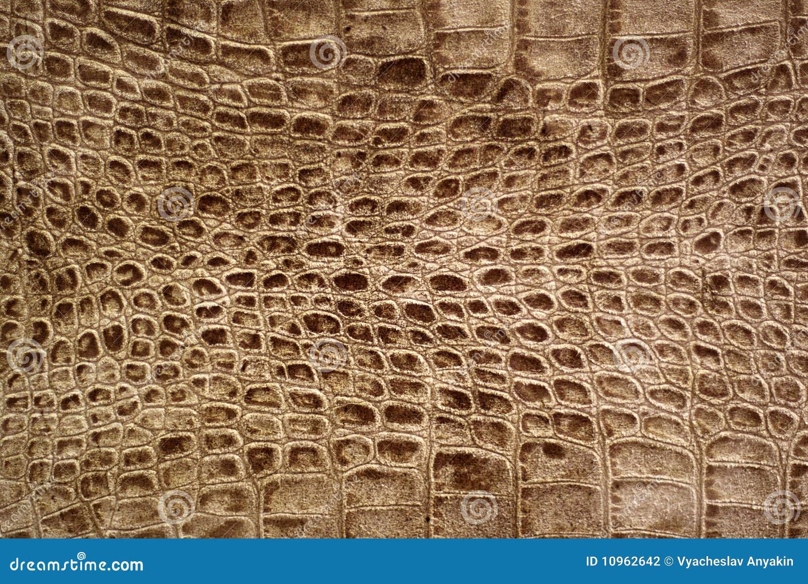 Snakeskin o struttura del coccodrillo