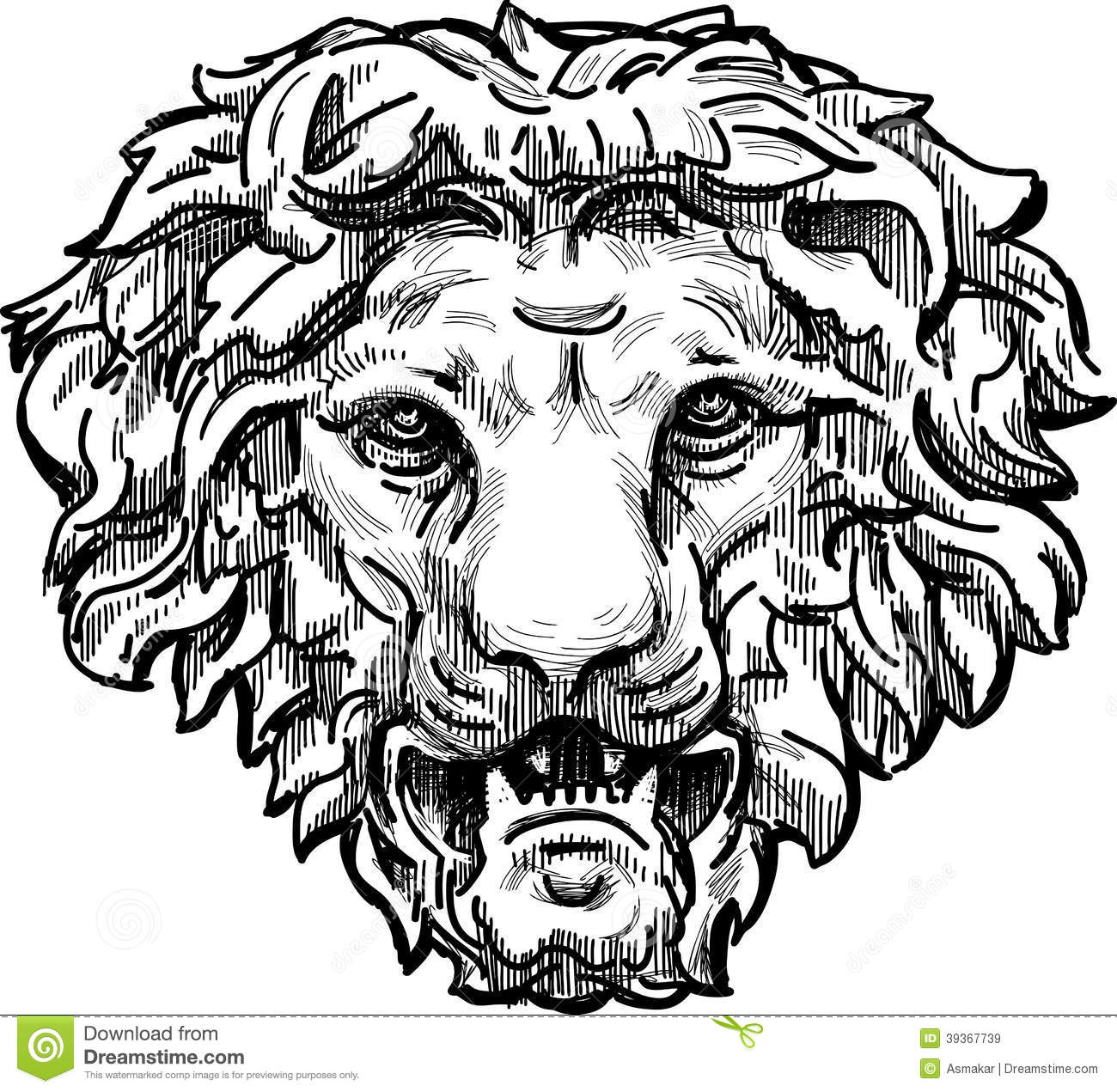 Snarling Lion Head Stock Photo Image 39367739