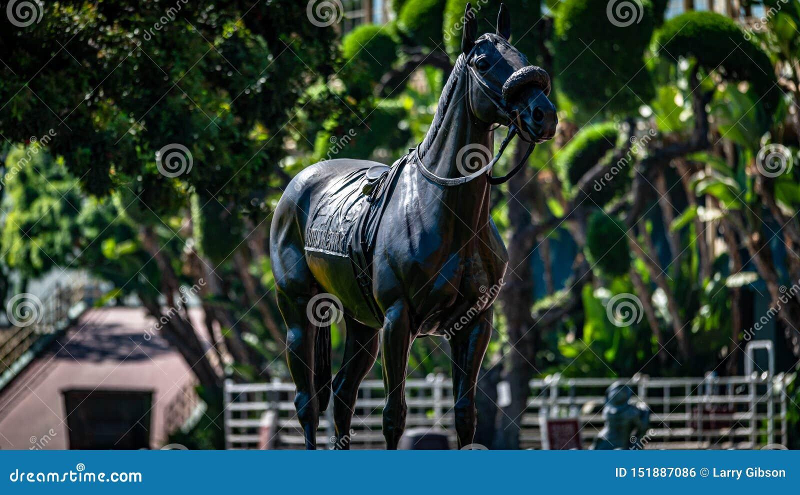 Snata Anita parka wyścigi konny