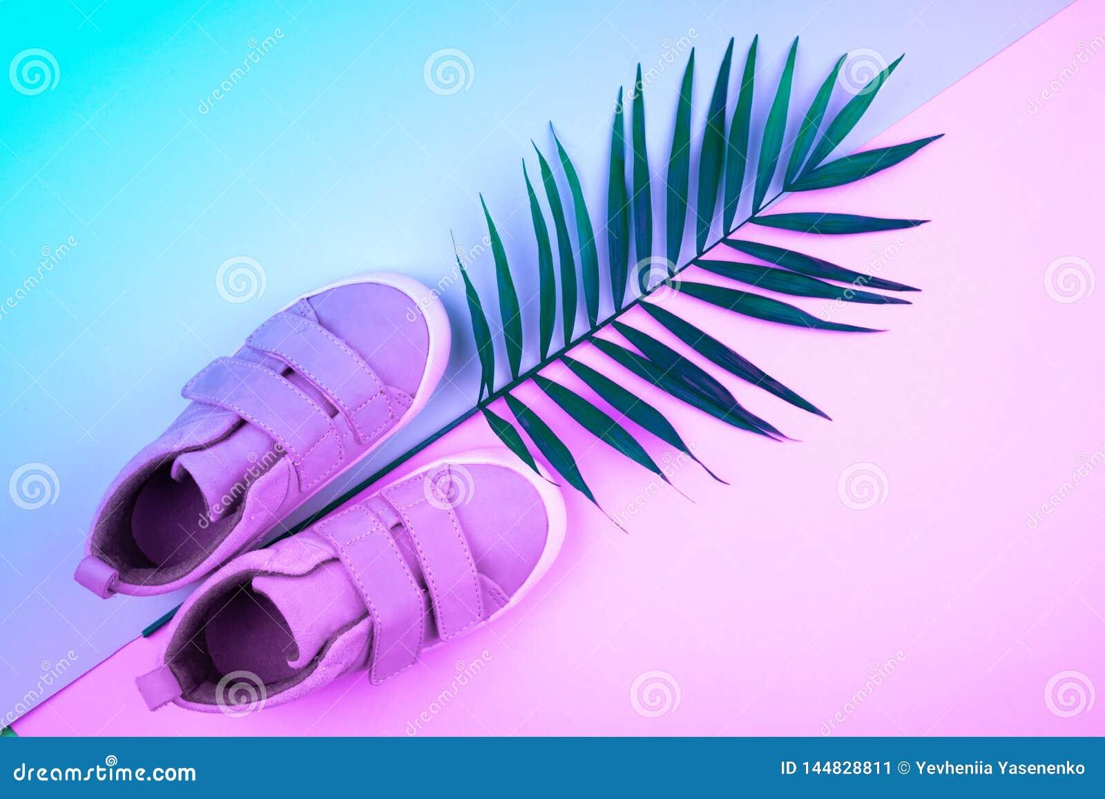 Sneakers i sprig drzewka palmowe na modnym koloru tle, odg?rny widok, lato buty