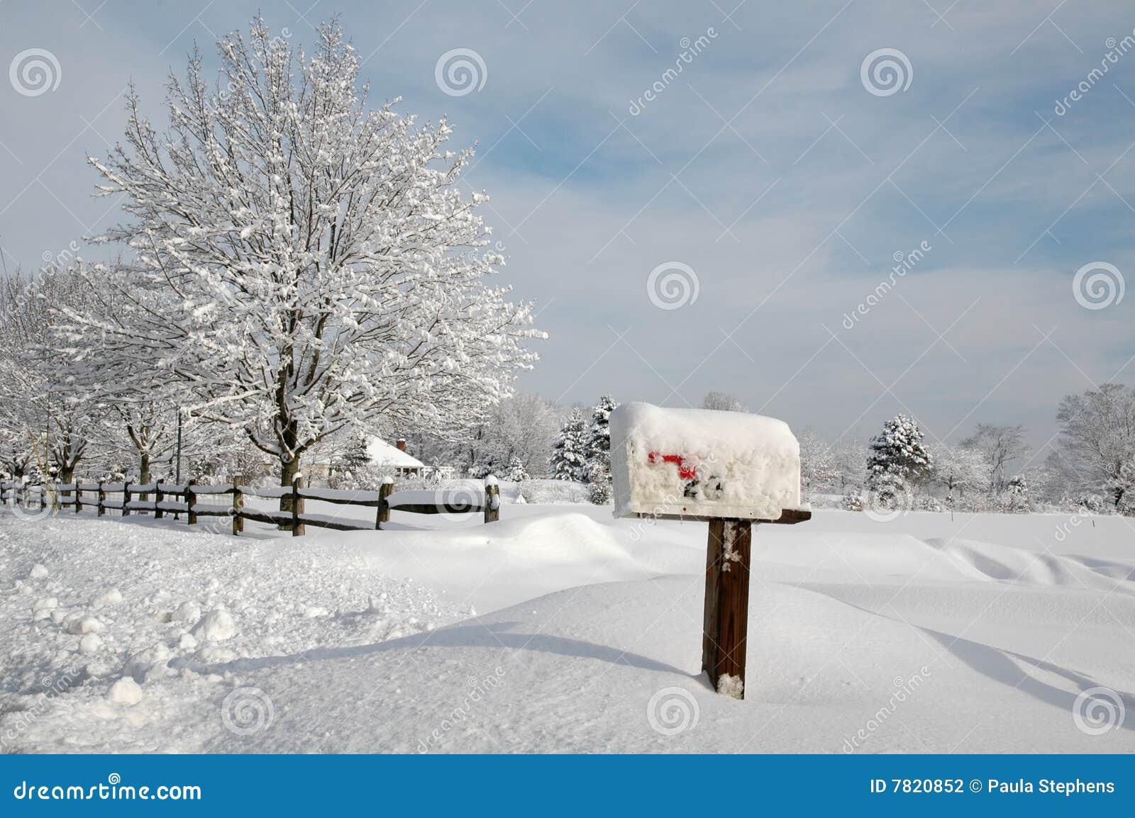 Sneeuw Behandeld Landschap