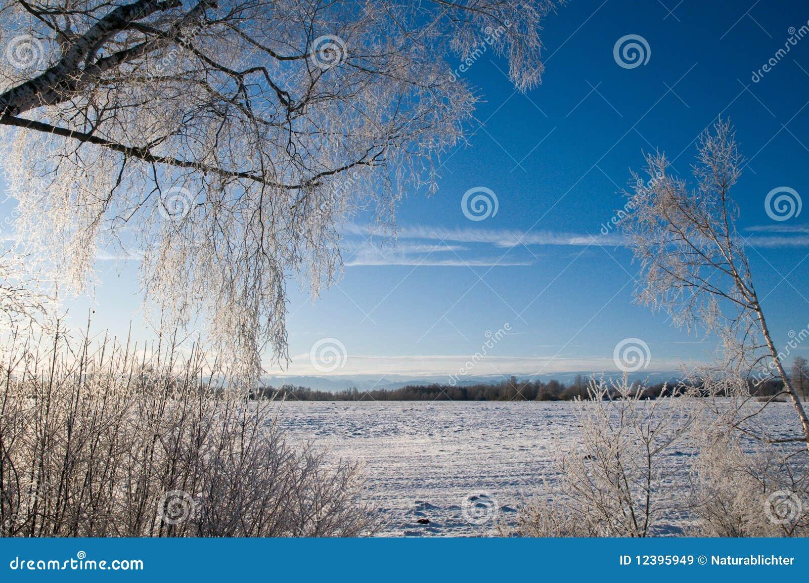 Sneeuw behandeld platteland
