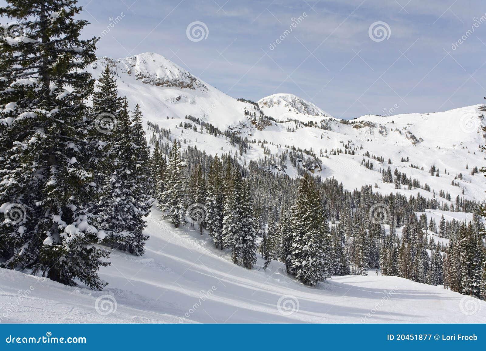 Sneeuw Bergen