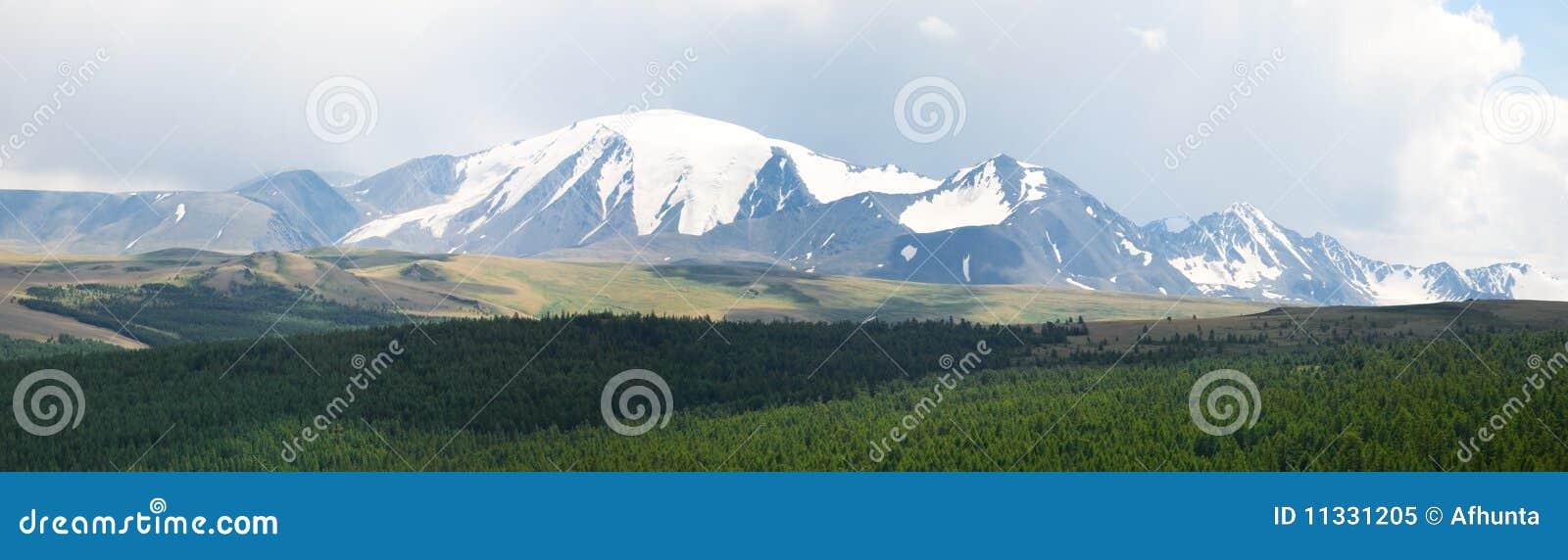Sneeuw bergpiek