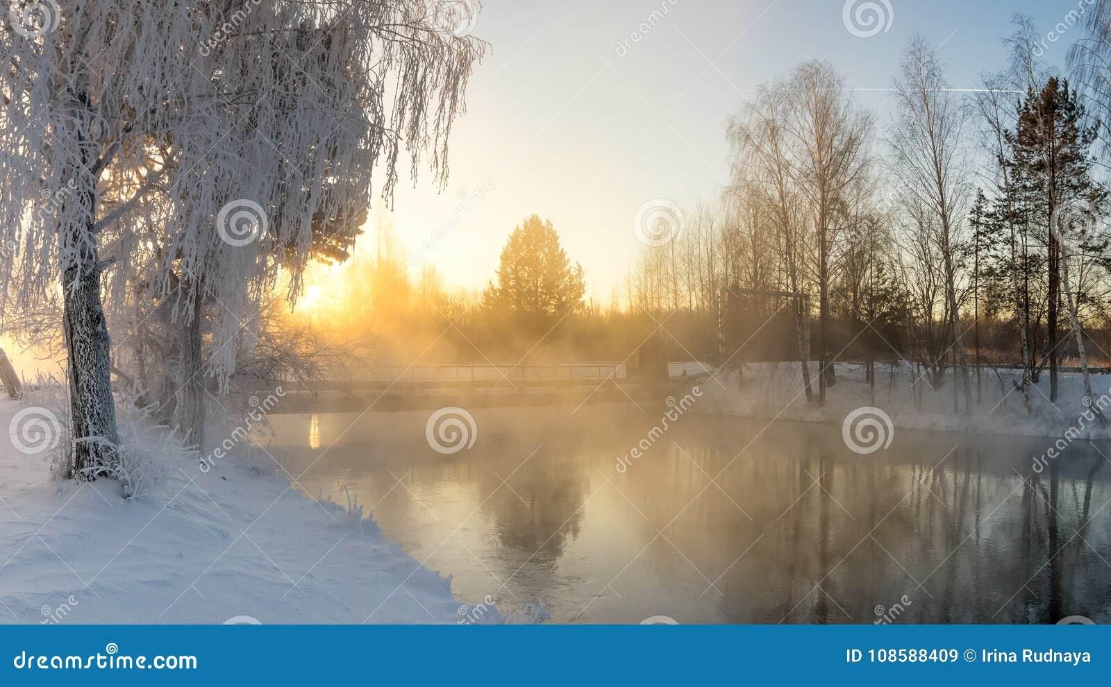 Sneeuw de winterbos met struiken en berkbomen op de banken van de rivier met mist, Rusland, het Oeralgebergte, Januari
