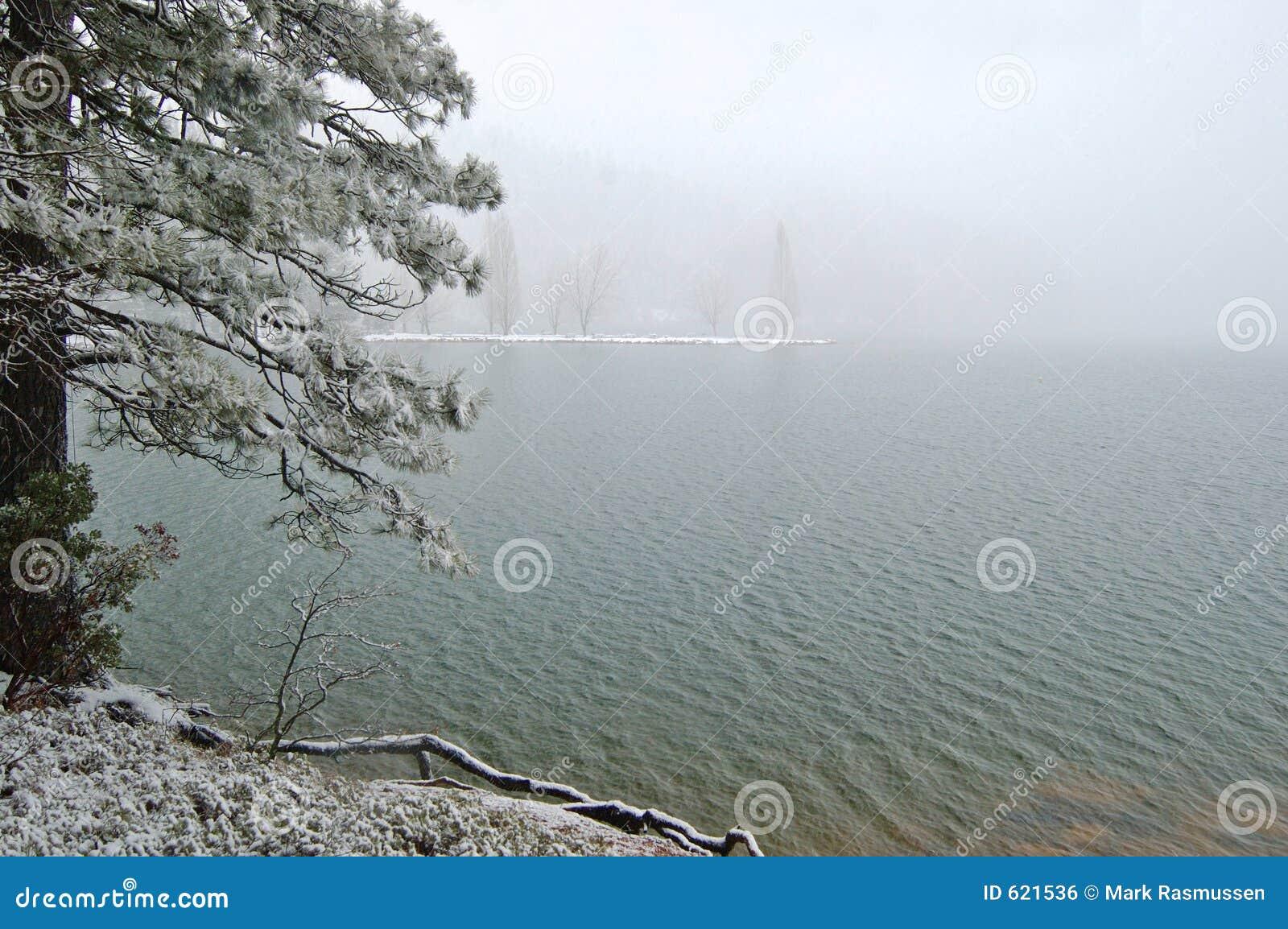 Sneeuw lakeshore