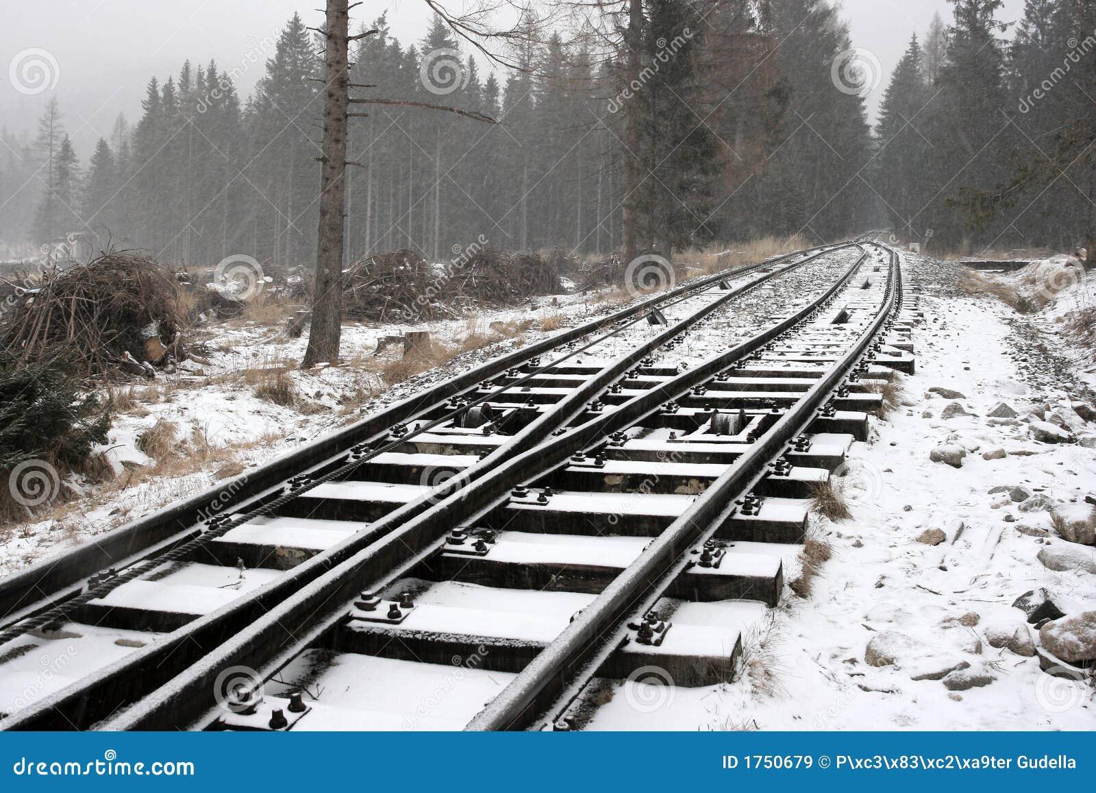 Sneeuw sporen
