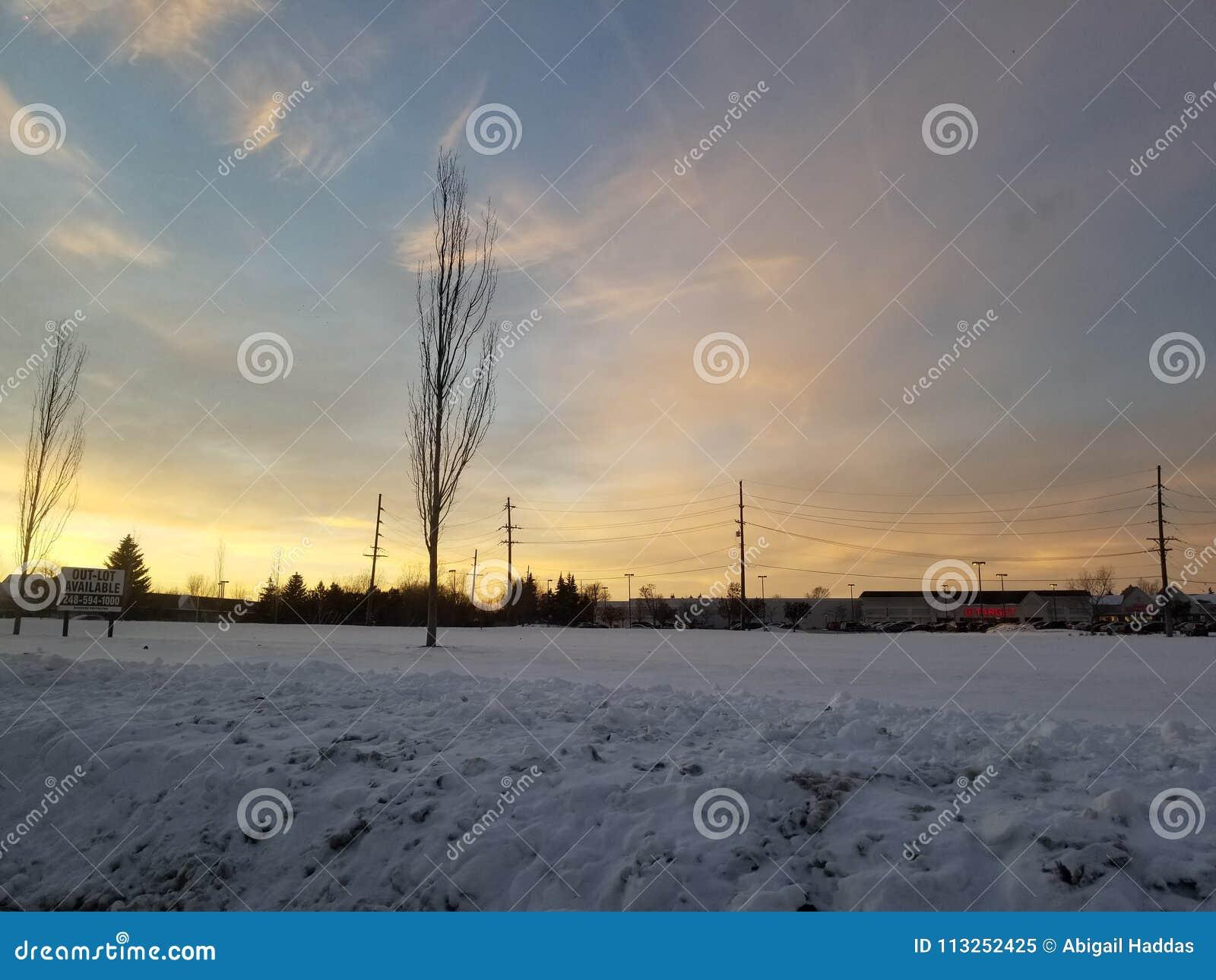 Sneeuwgebied