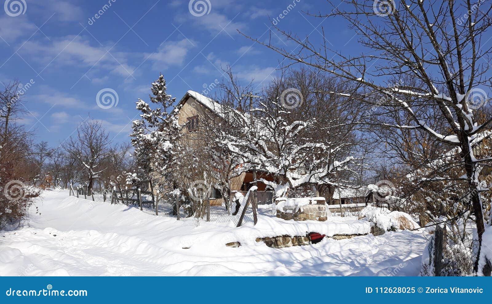 Sneeuwhuis op zonnige blauwe hemel