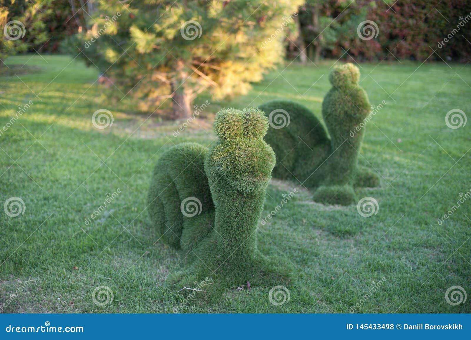 Sniglar från buskarna