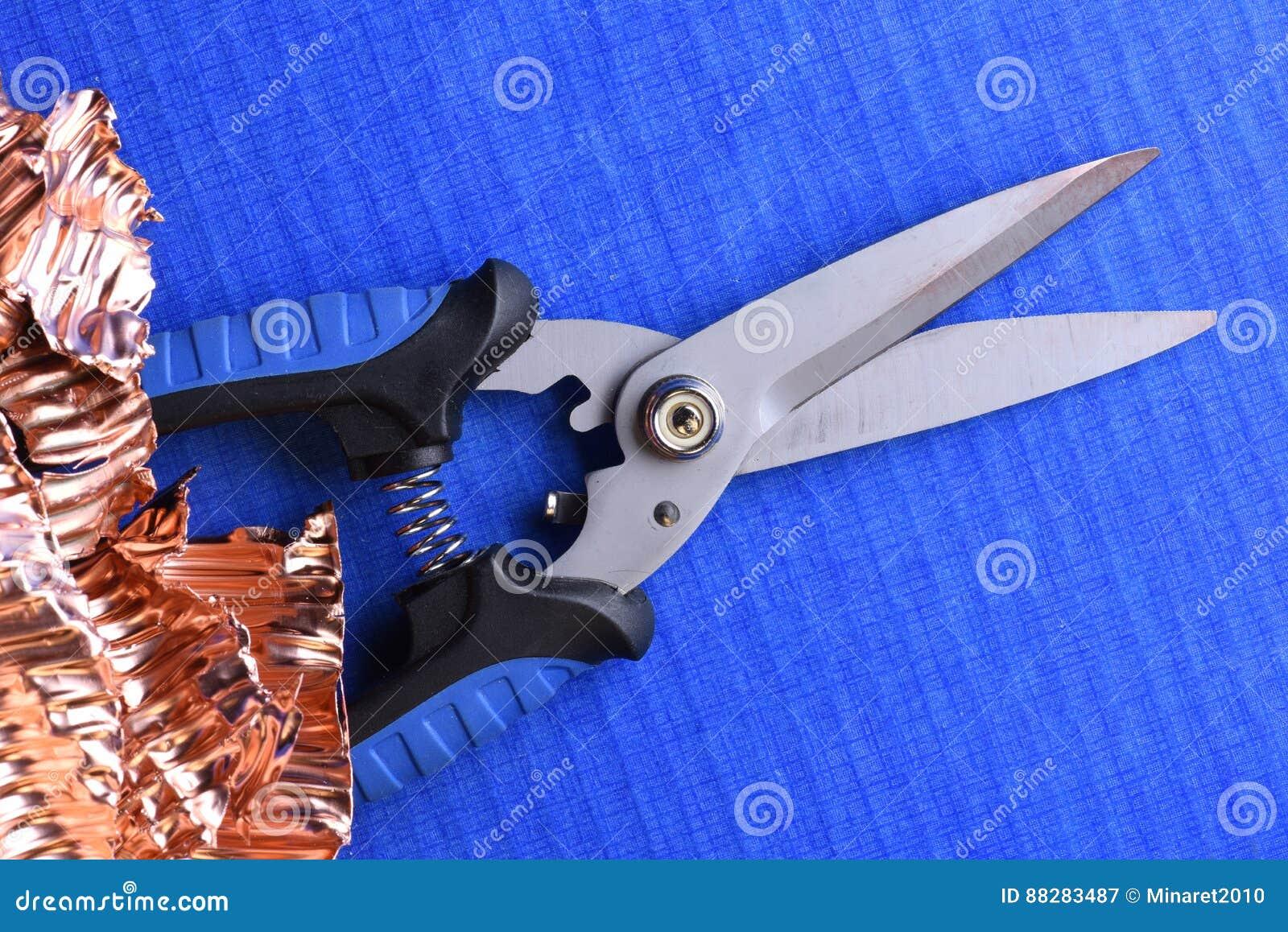 Snip krajacza i groszaka świstek na błękitnym tle