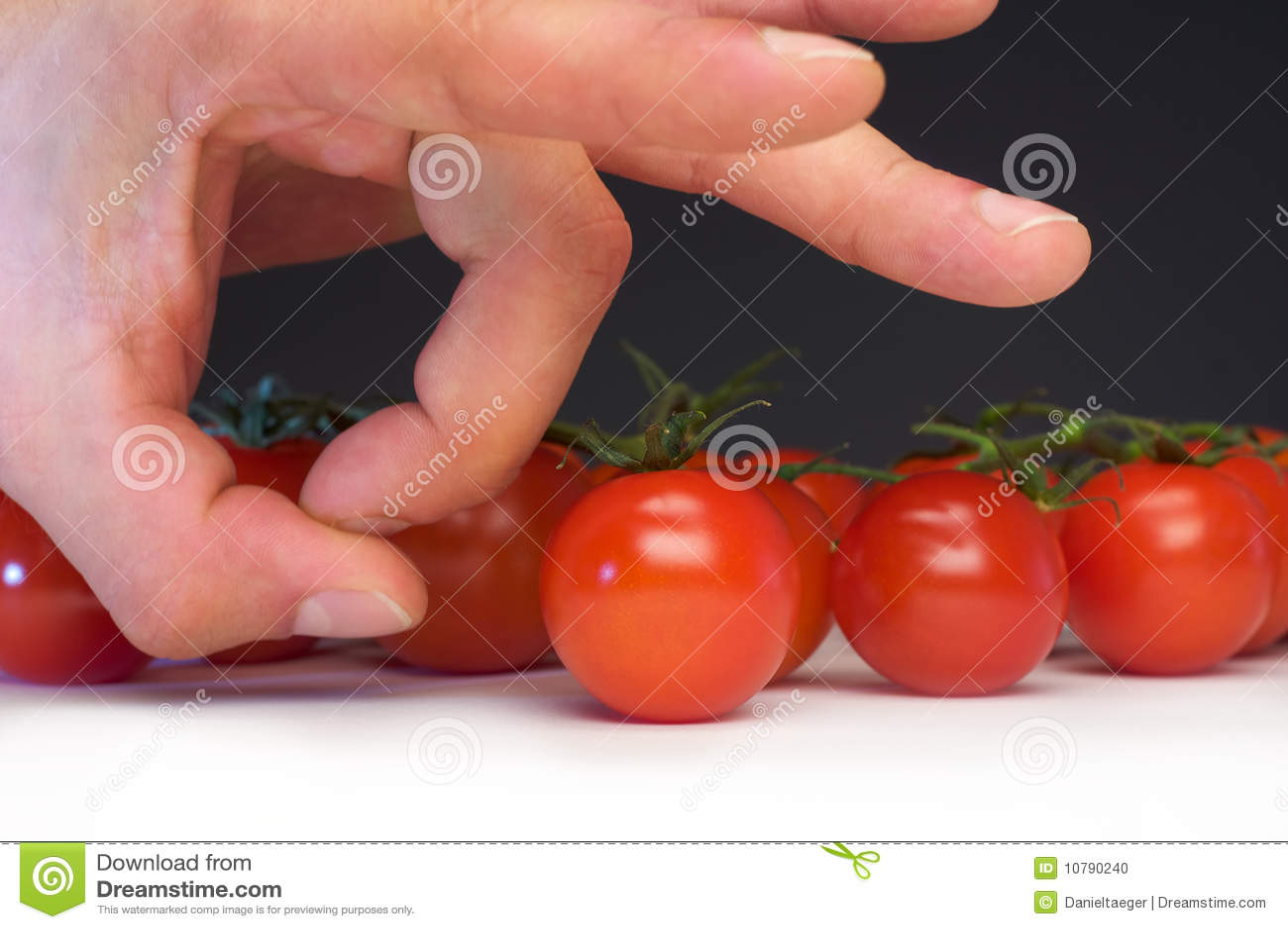 Snip pomidor