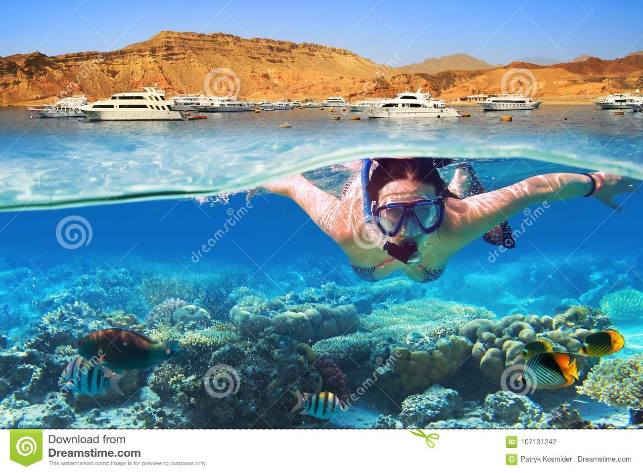 Snorkeling in the tropical water of Red Sea