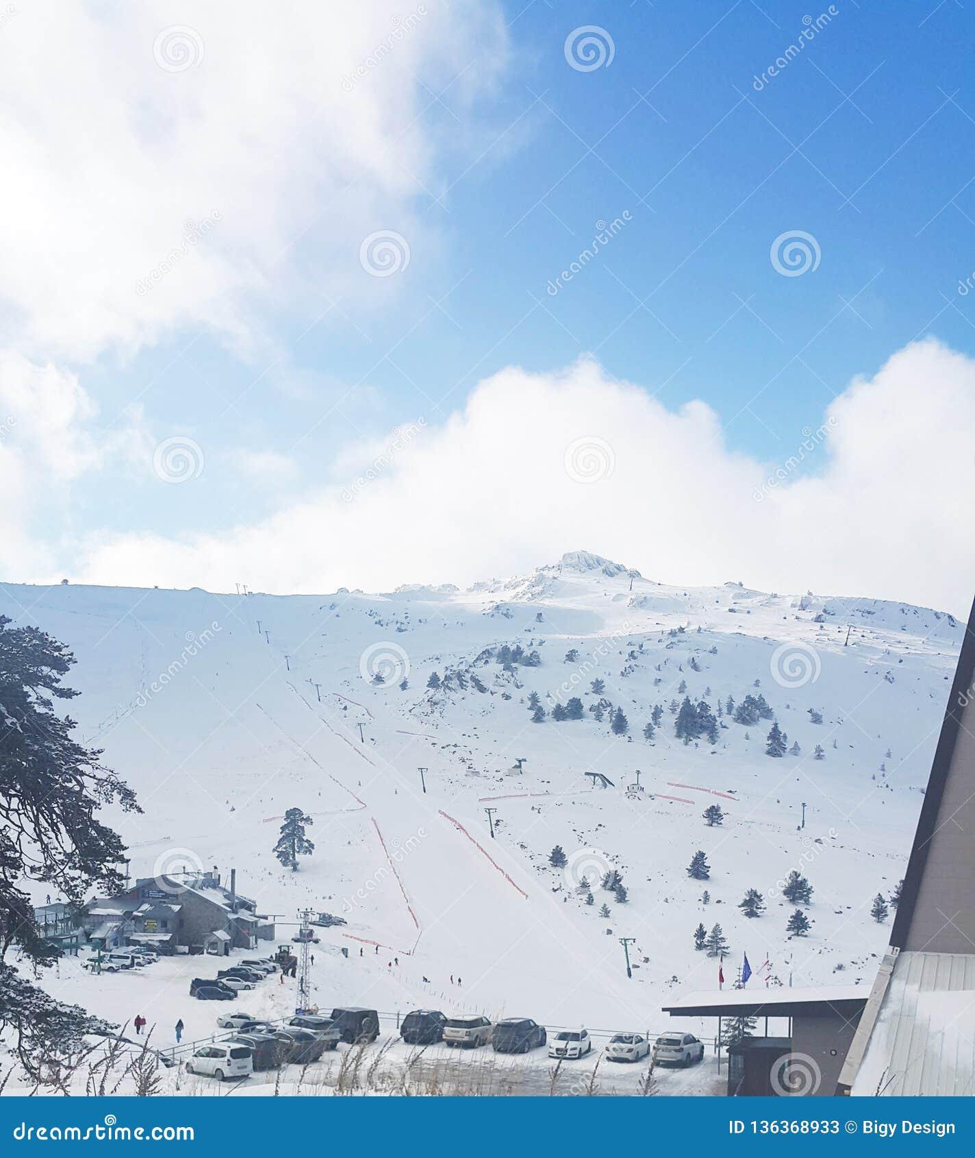 Snow breaks and fun
