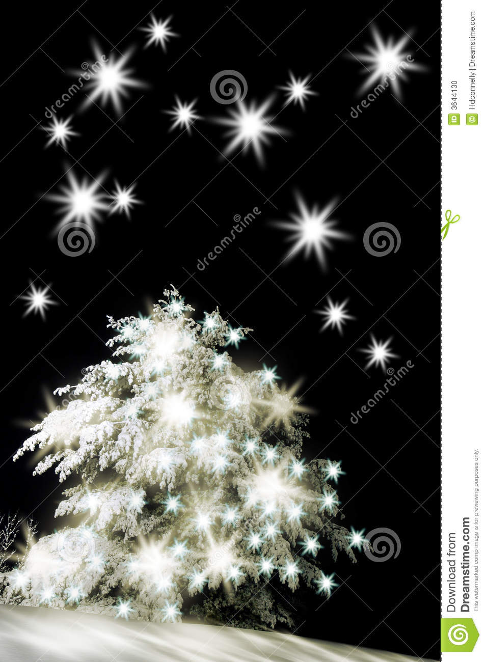 snow covered christmas tree stock photo image 3644130. Black Bedroom Furniture Sets. Home Design Ideas