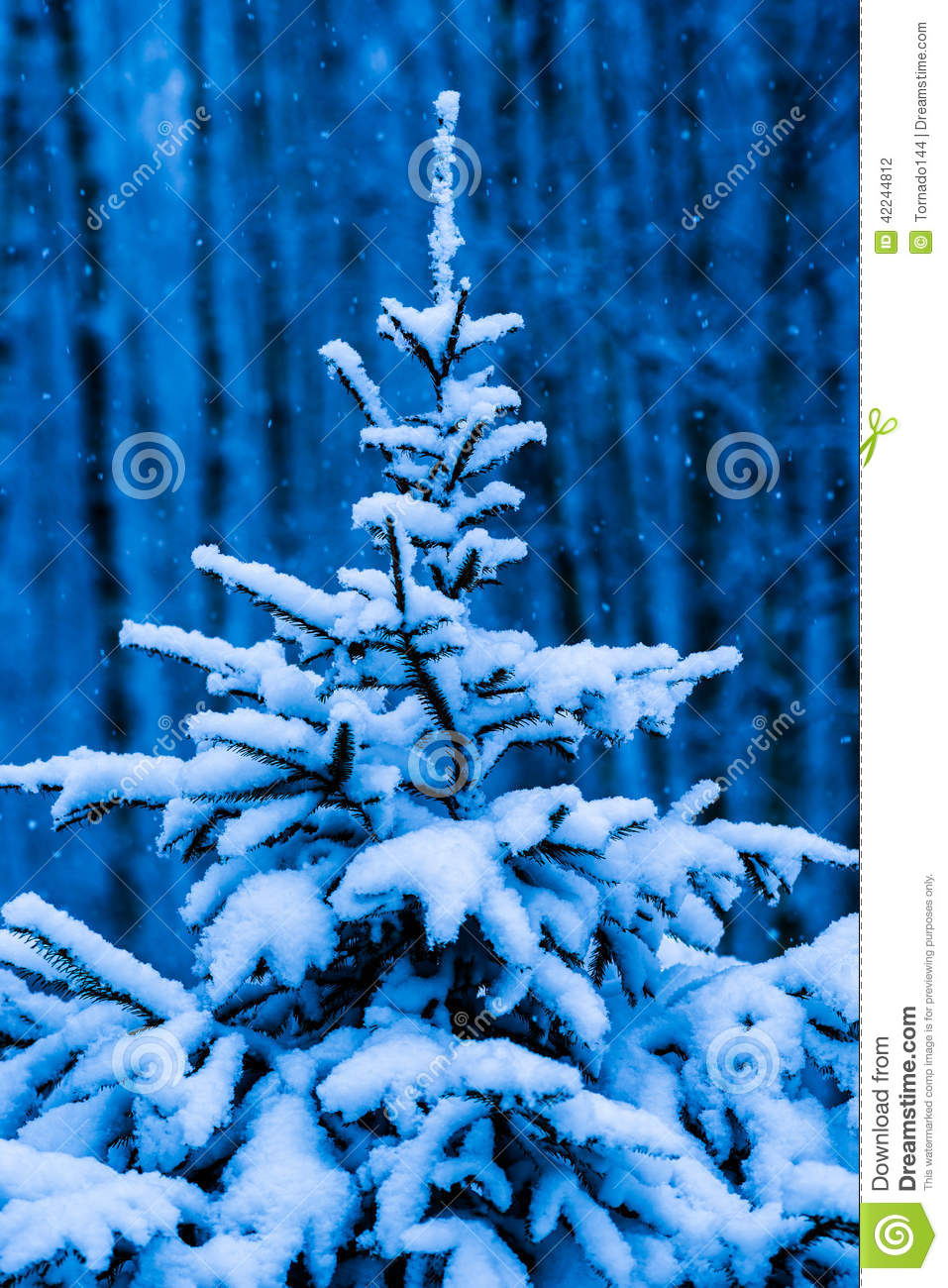 snow covered christmas tree against blue background stock. Black Bedroom Furniture Sets. Home Design Ideas