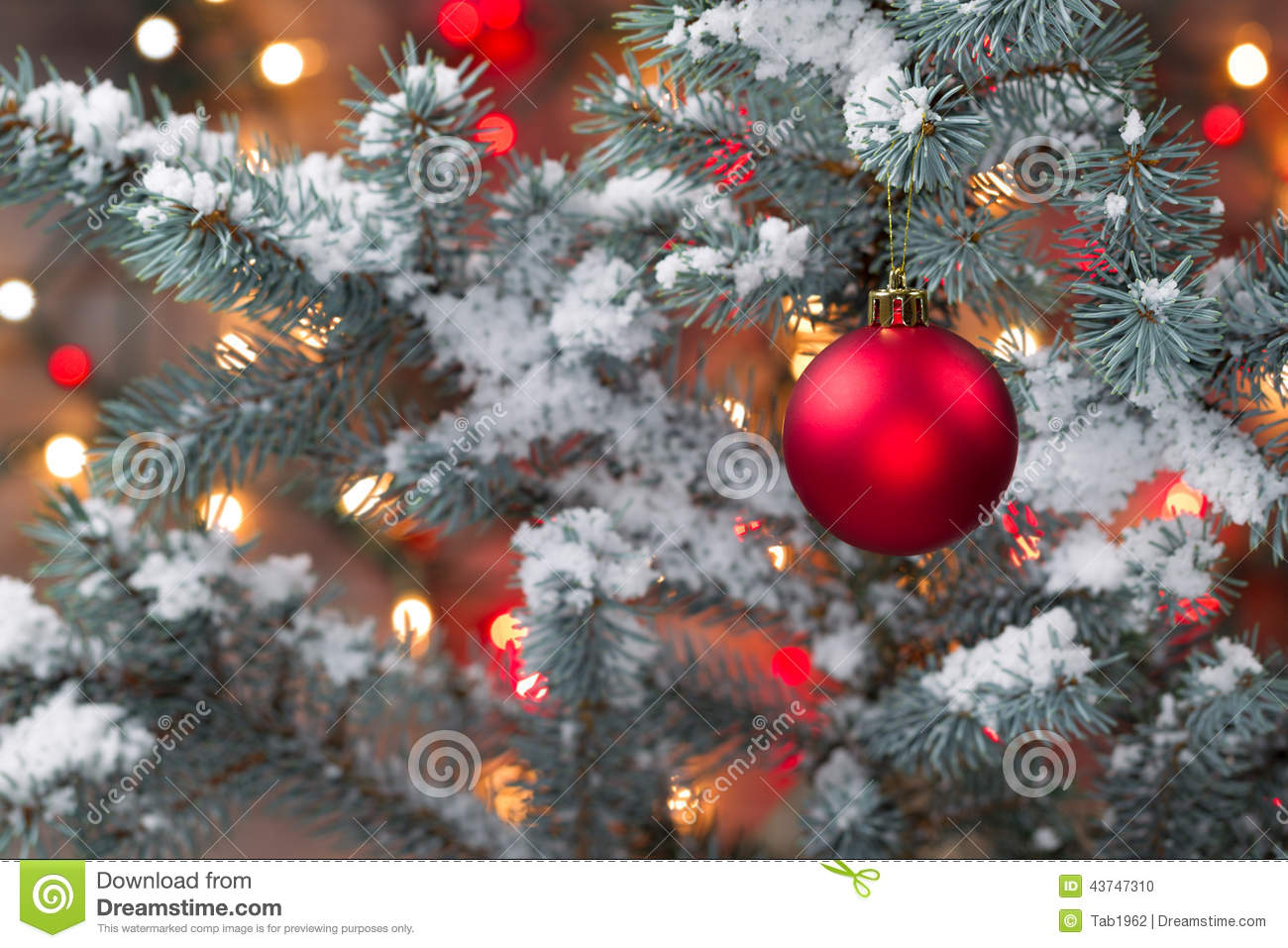 Snow covered christmas tree with hanging red ornament stock photo