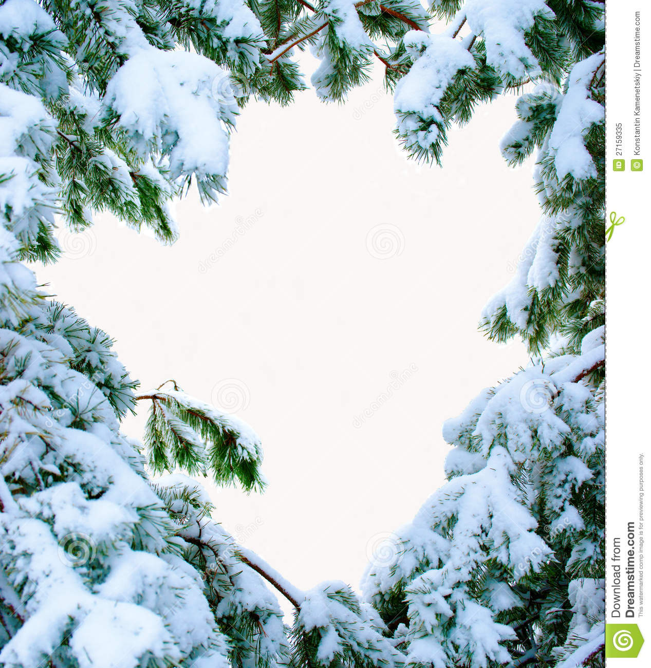 snow covered fir branches christmas tree in snow stock. Black Bedroom Furniture Sets. Home Design Ideas