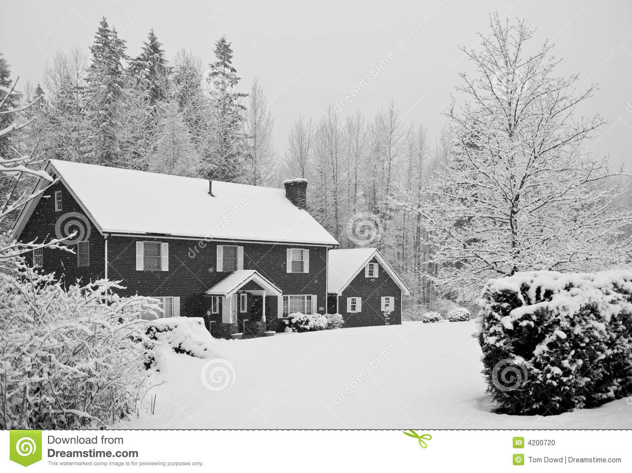 snow covered house - photo #33
