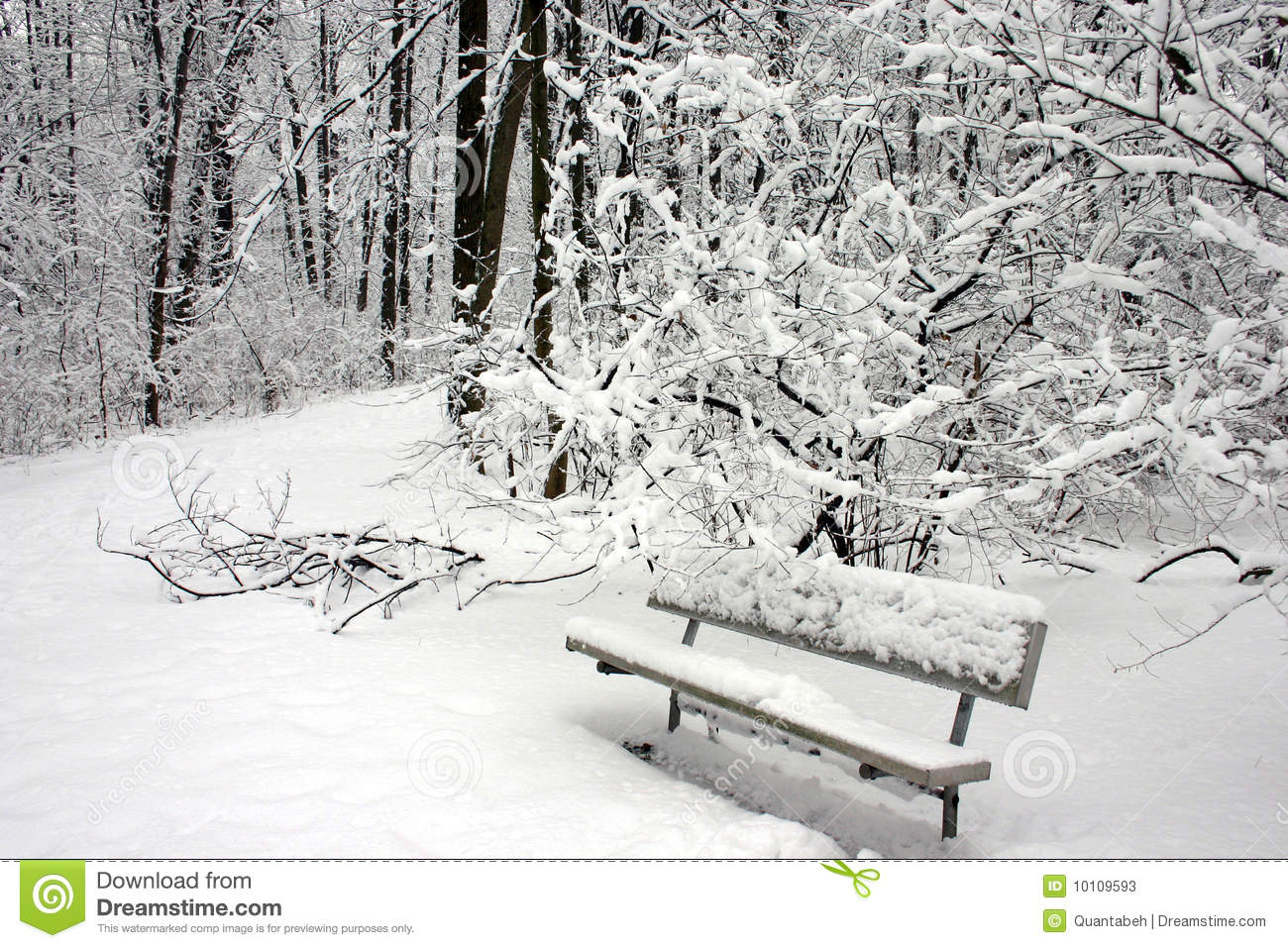 Snow Covered Park Bench Stock Photos Royalty Free Images