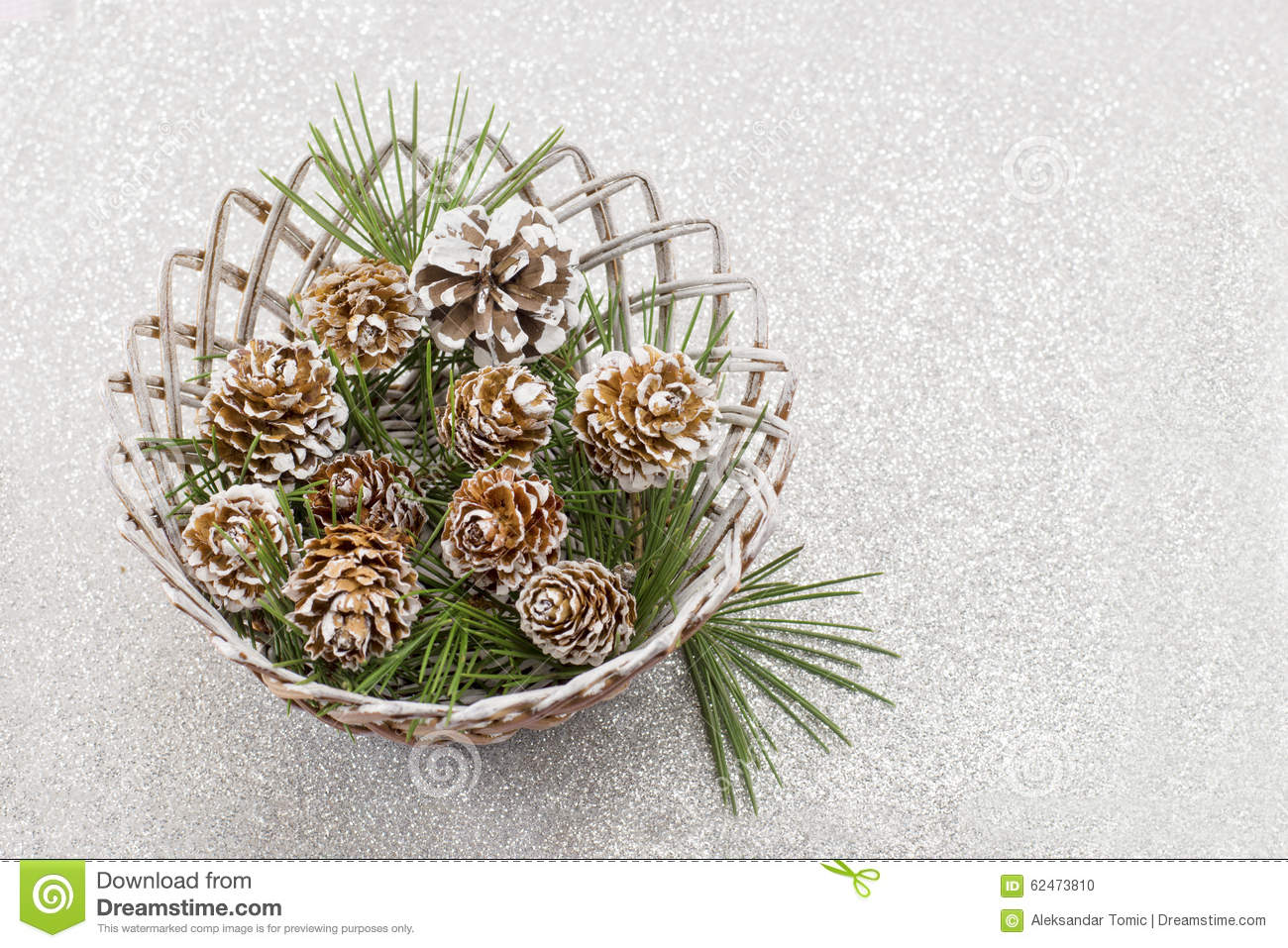 Snow covered pine cones on shiny background