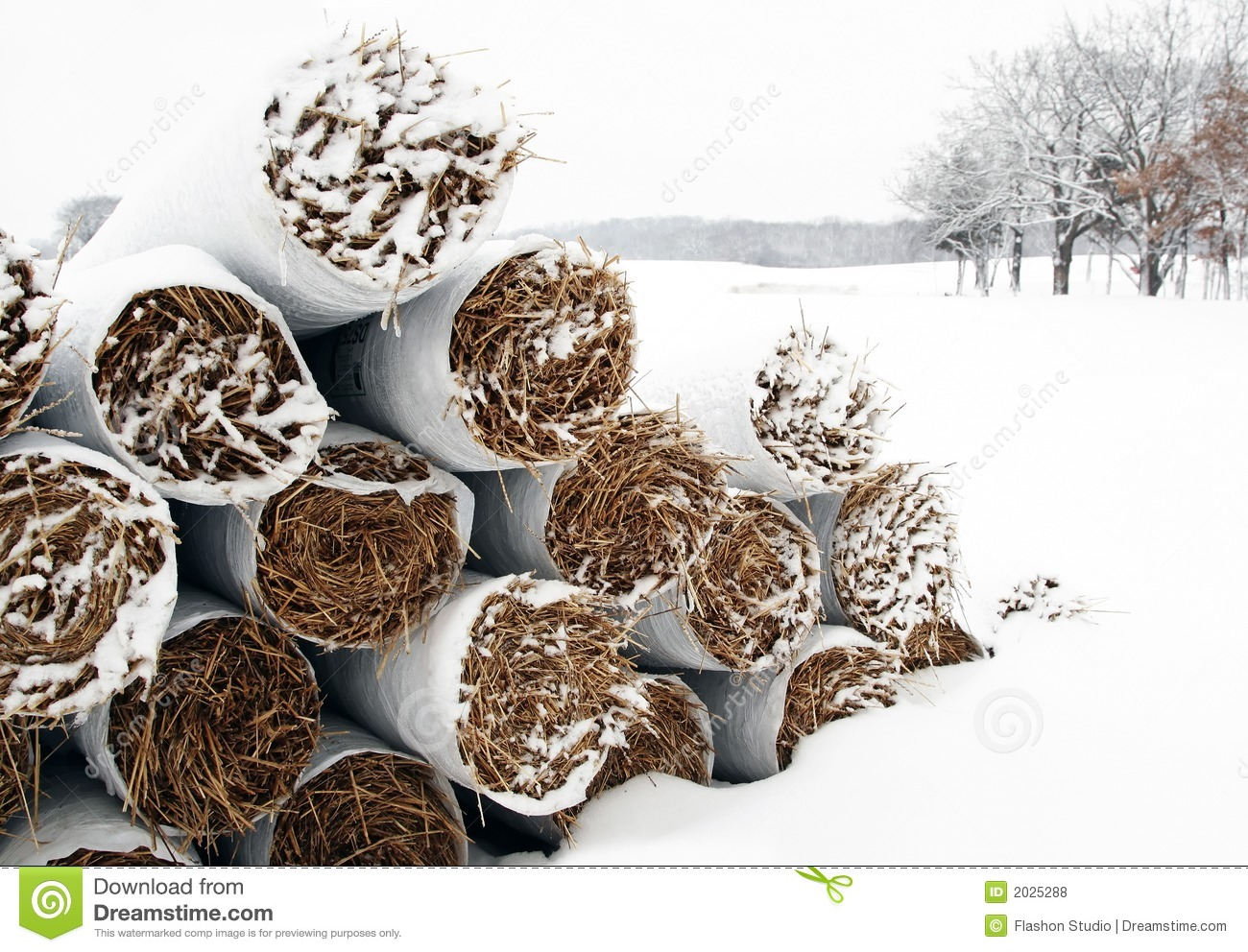 Snow covered straw stack
