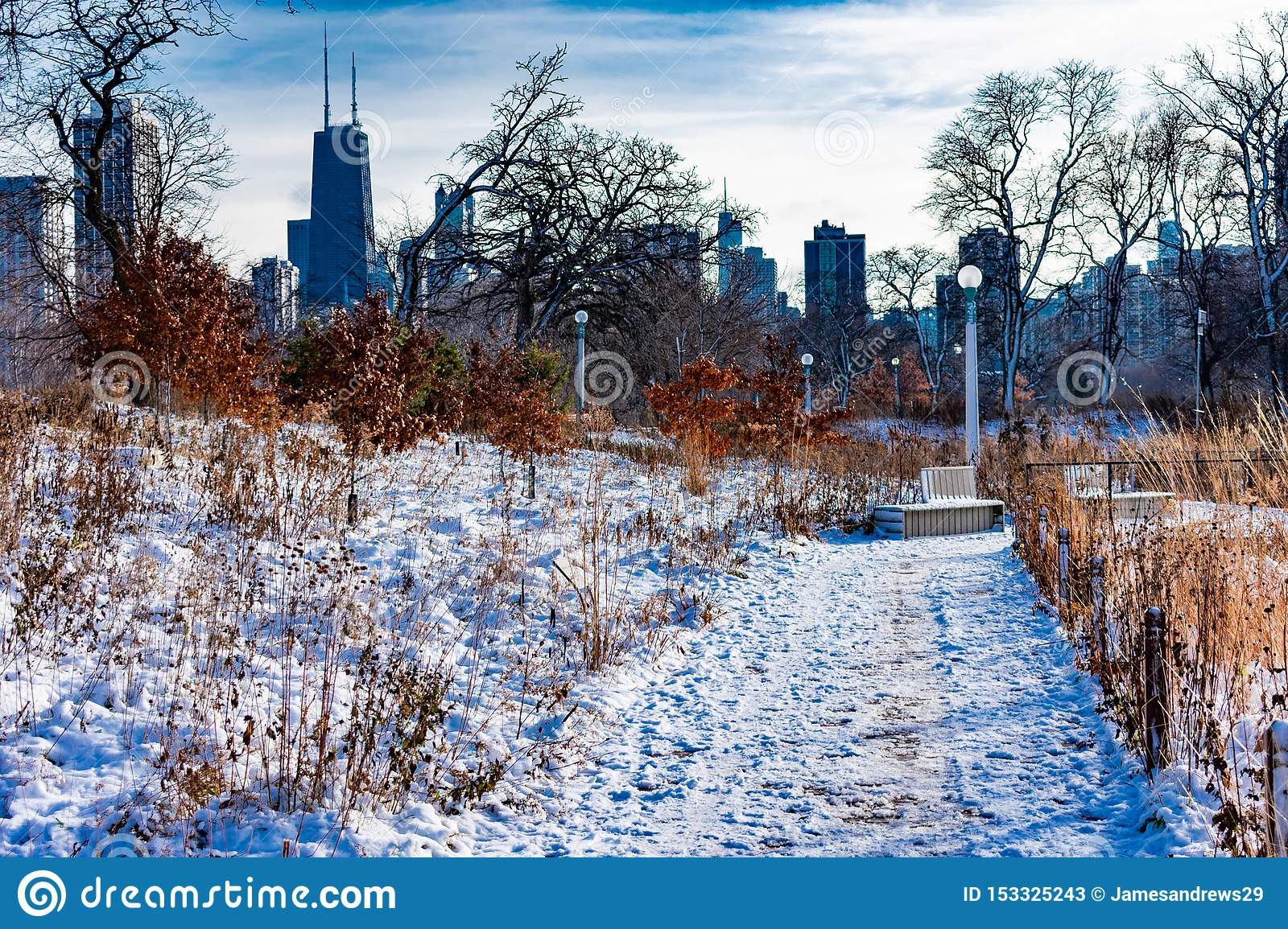 Snow Covered Trail in Lincoln Park Chicago with Skyline
