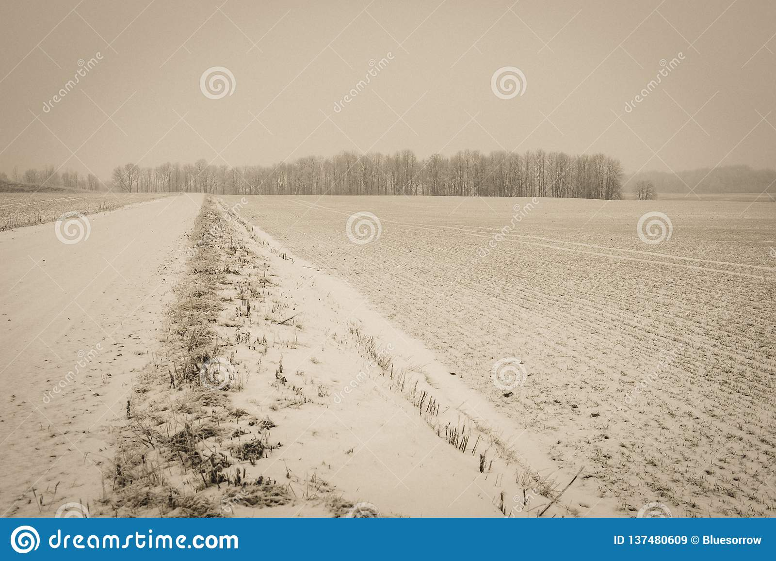 Snow covered winter road with tire tracks - vintage retro look. Snow covered winter road with tire tracks in perspective with blue sky and sunny day - vintage royalty free stock images