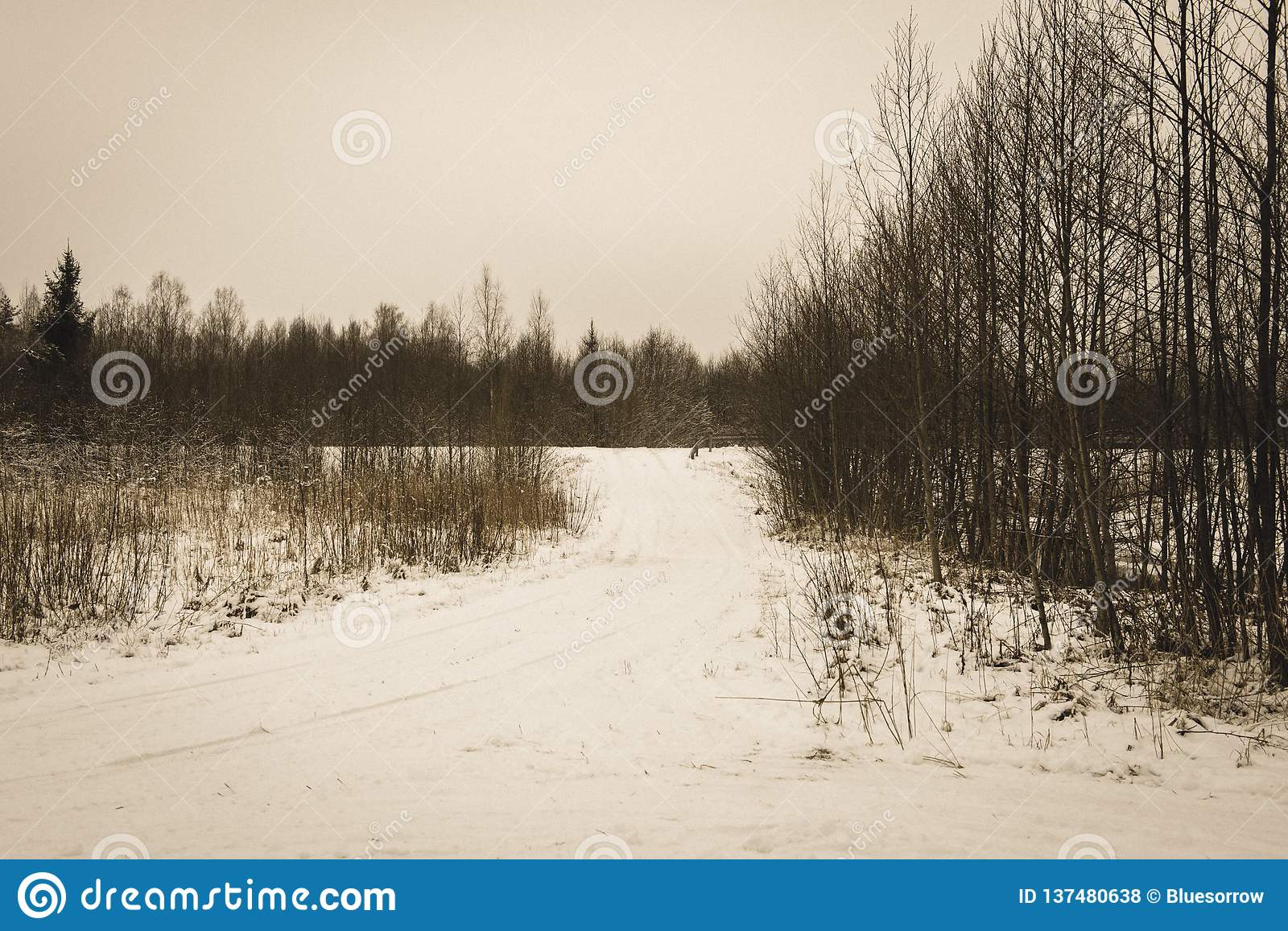Snow covered winter road with tire tracks - vintage retro look. Snow covered winter road with tire tracks in perspective with blue sky and sunny day - vintage royalty free stock photos