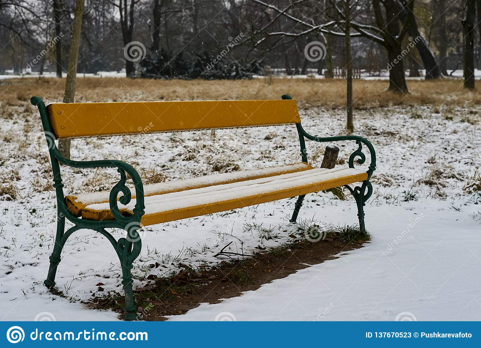 Marvelous Snow Covered Wooden Bench In Early Winter In City Park In Caraccident5 Cool Chair Designs And Ideas Caraccident5Info
