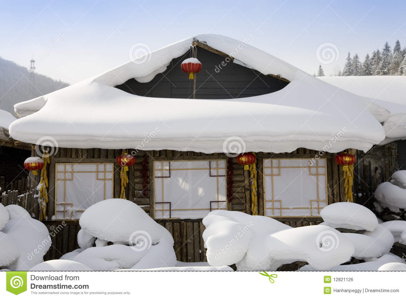 snow covered house - photo #43