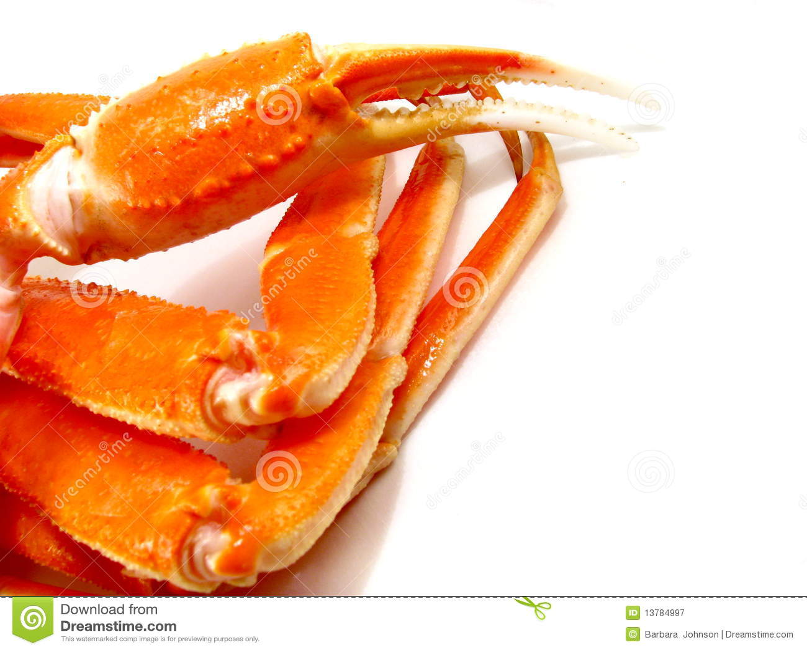 snow crab legs stock photo image 61711426