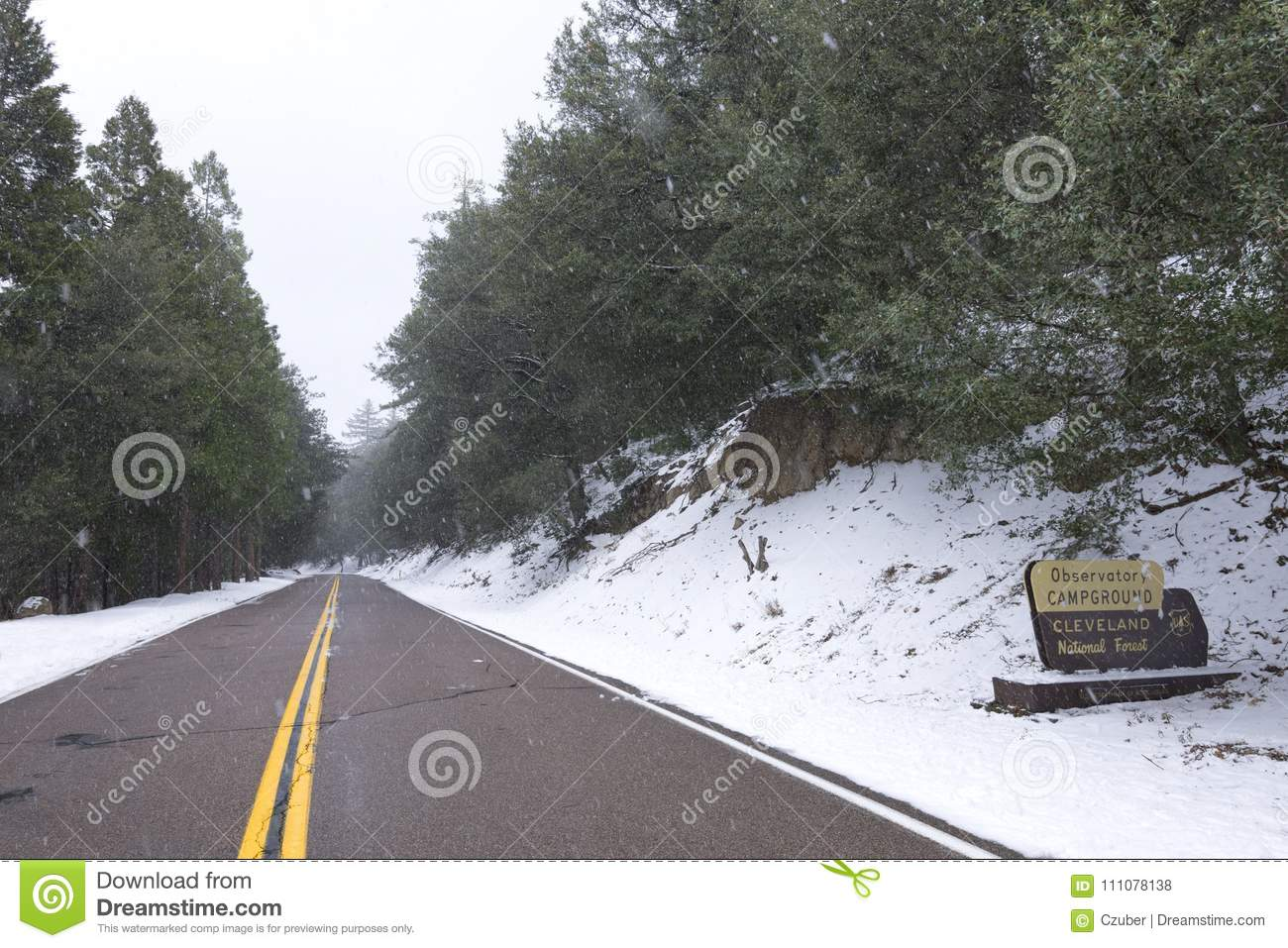 Snow Falling At Campground On Palomar Mountain Editorial