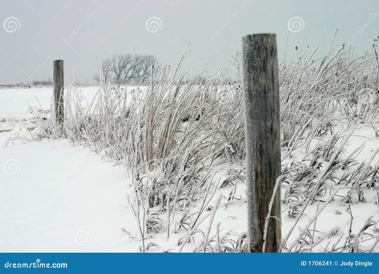 Snow Fence Posts