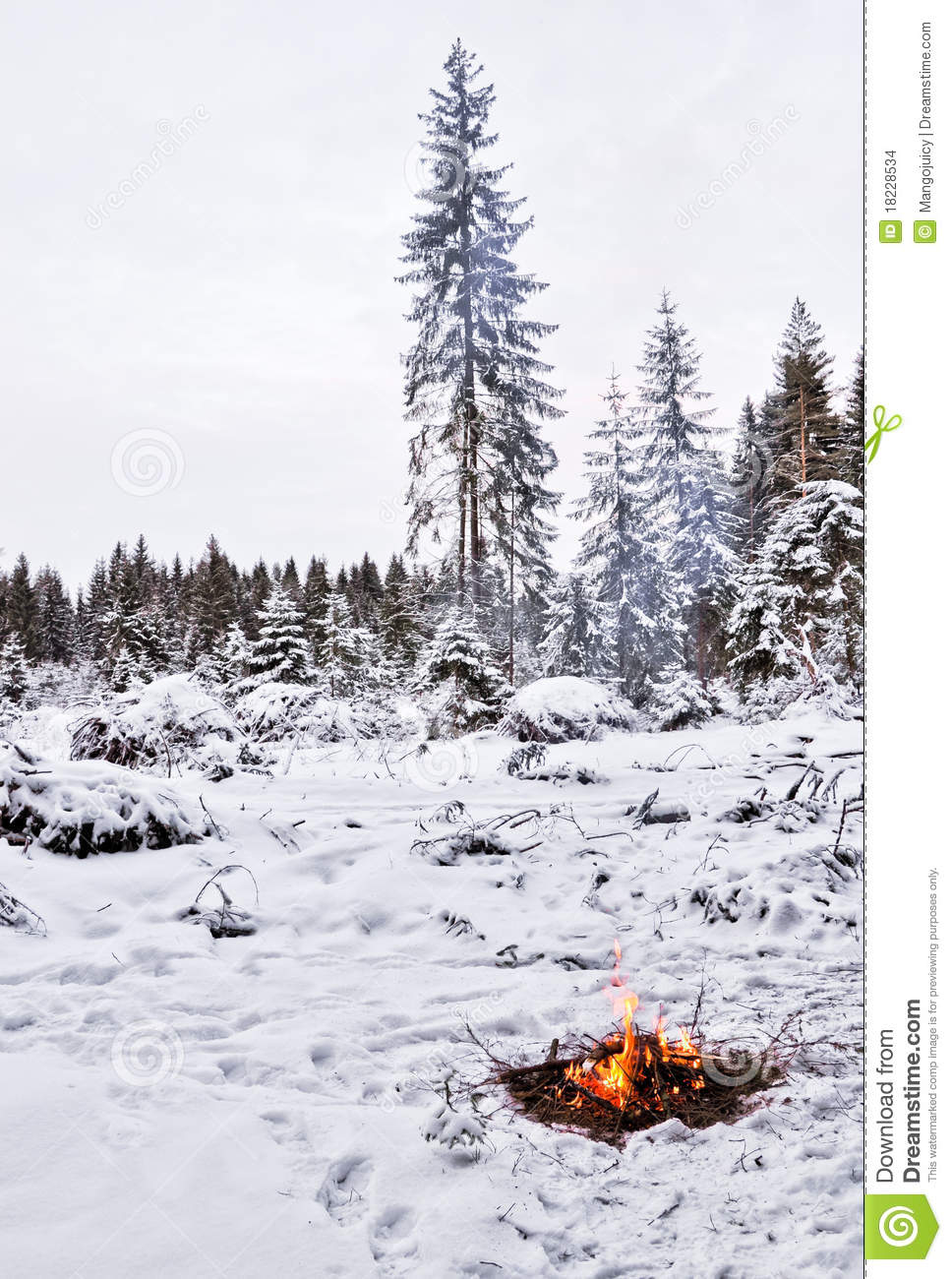 how to start a fire in the snow