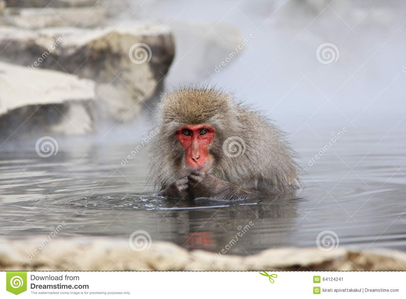 how to get to snow monkeys from nagano