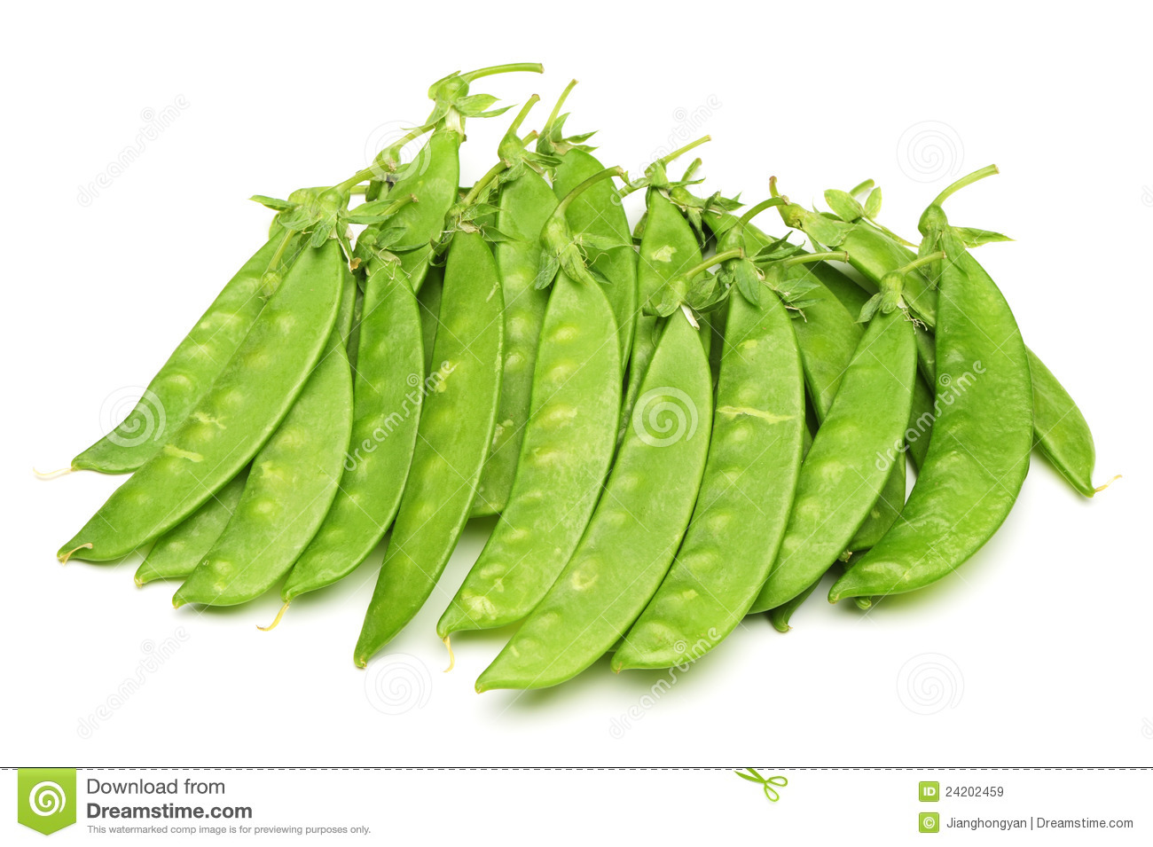 Snow Peas Royalty Free Stock Images - Image: 24202459