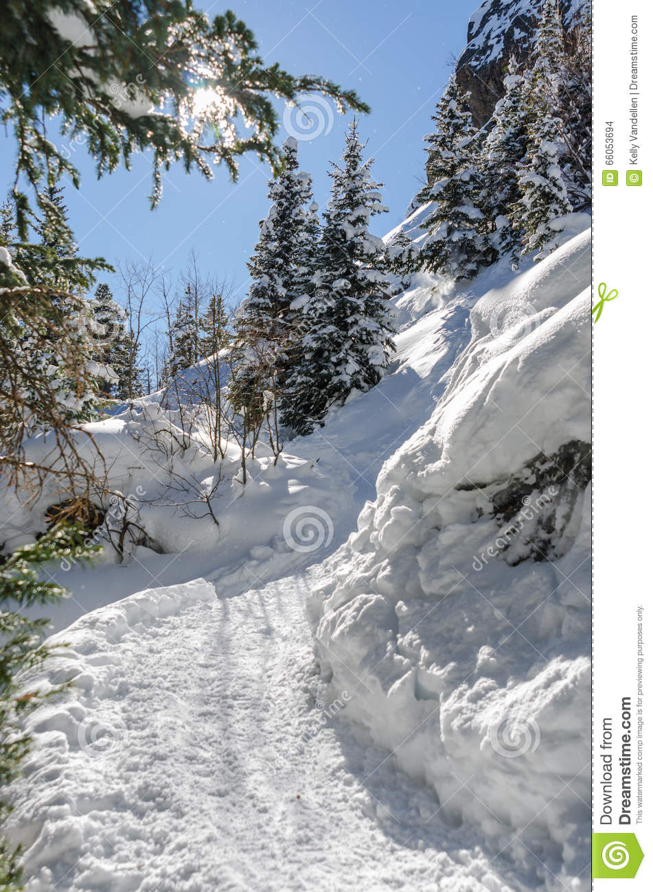 Christmas In Colorado Mountains.Snow Shoe Tracks Uphill In Colorado Mountains Stock Photo