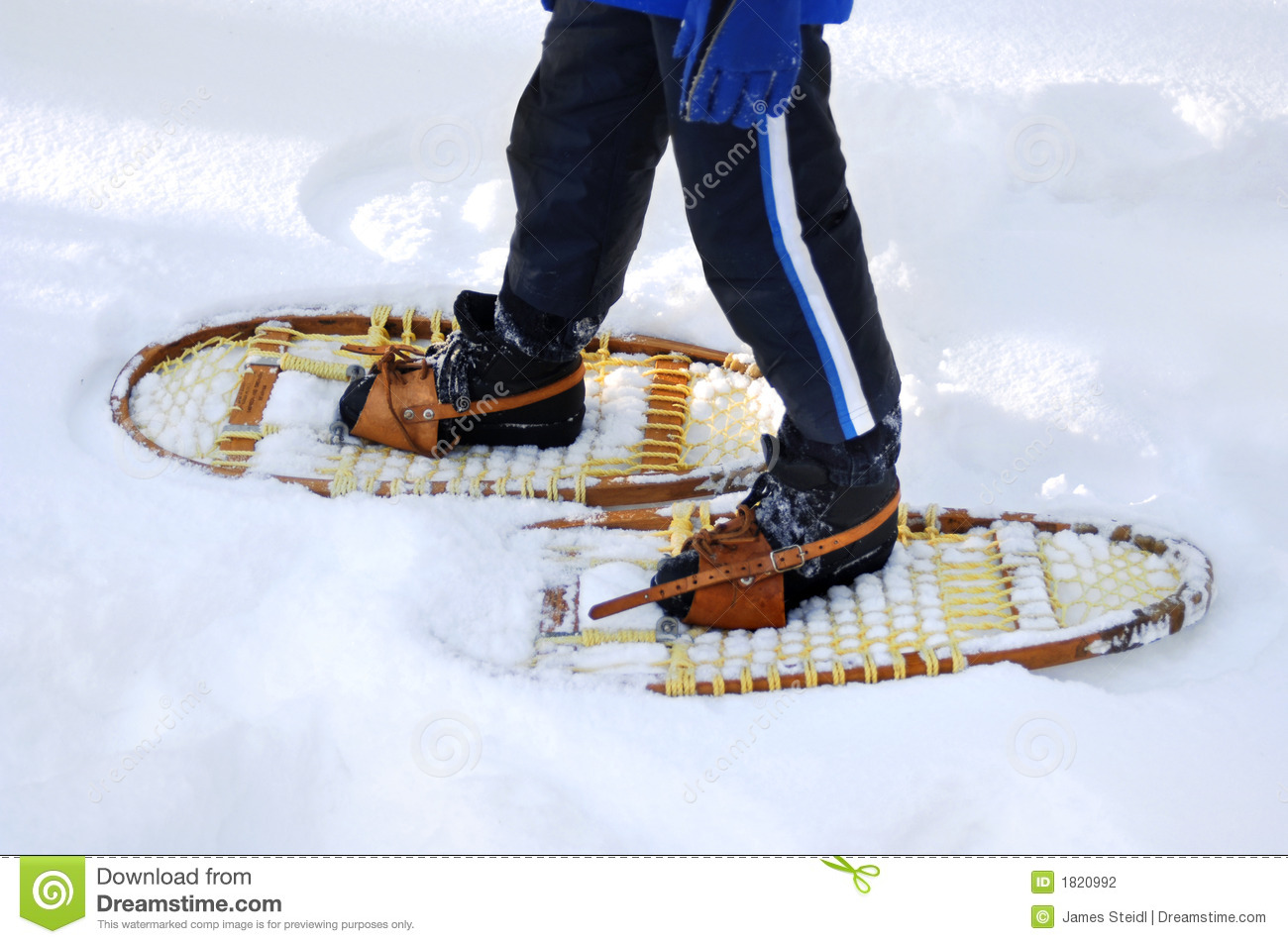 Stock Photography: Snow shoeing