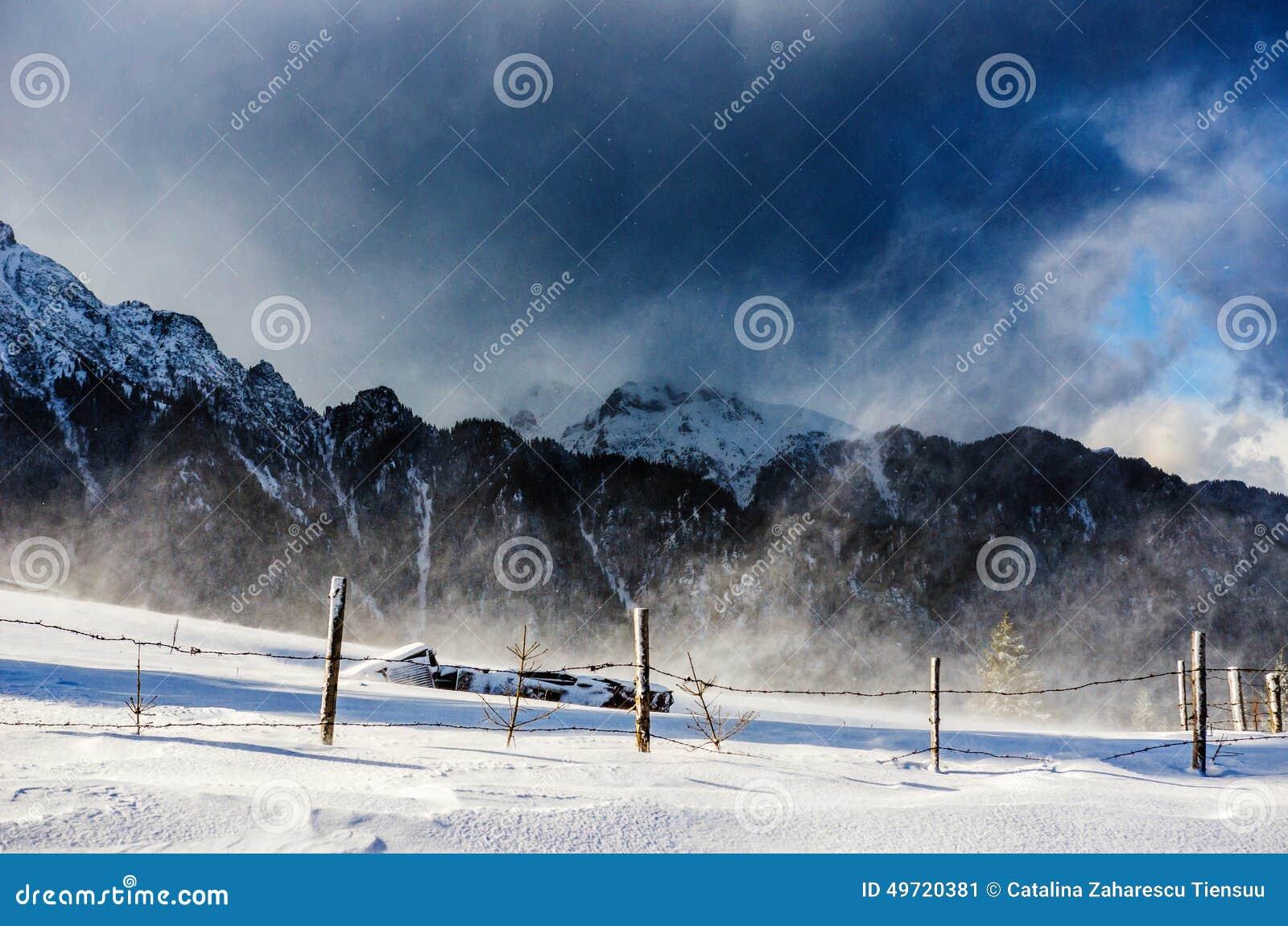 Snow storm in Carpathian mountains
