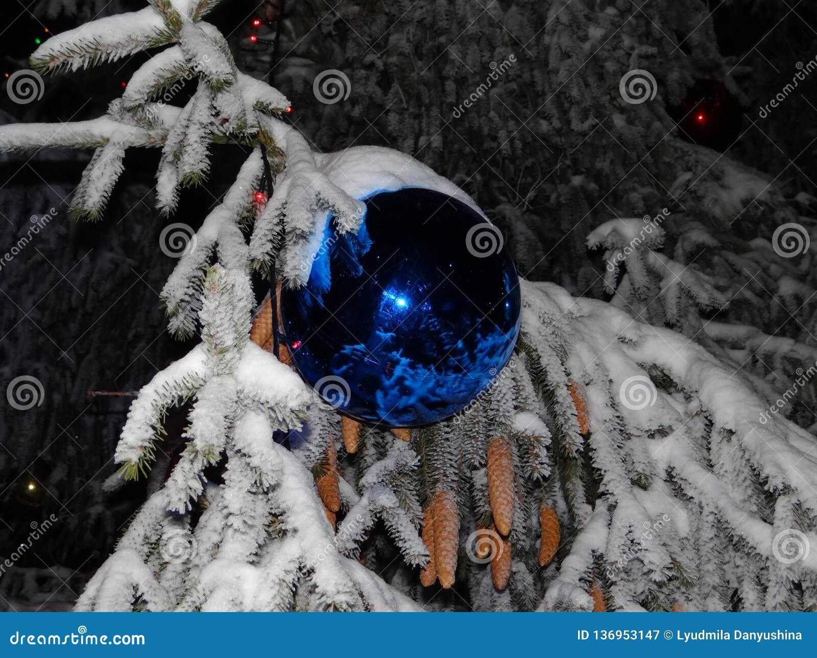 Beautiful Blue Ball On The Christmas Tree. Stock Image   Image of ...