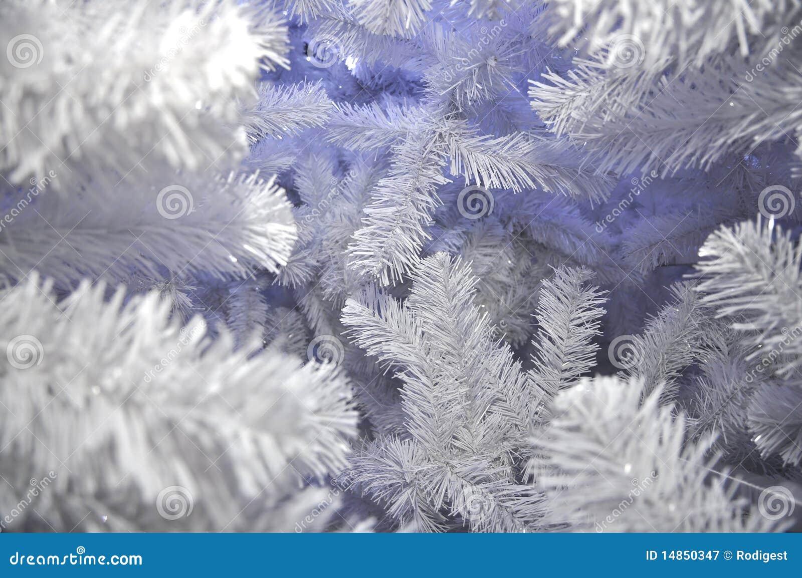 Snow Tree White Christmas Background