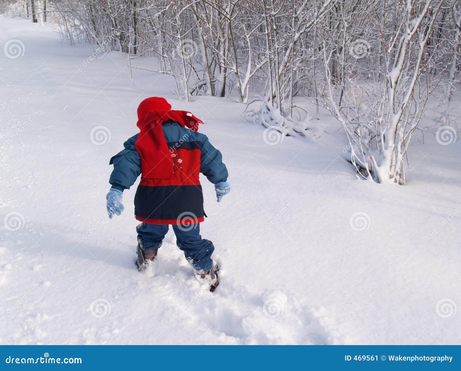 Snow Venture
