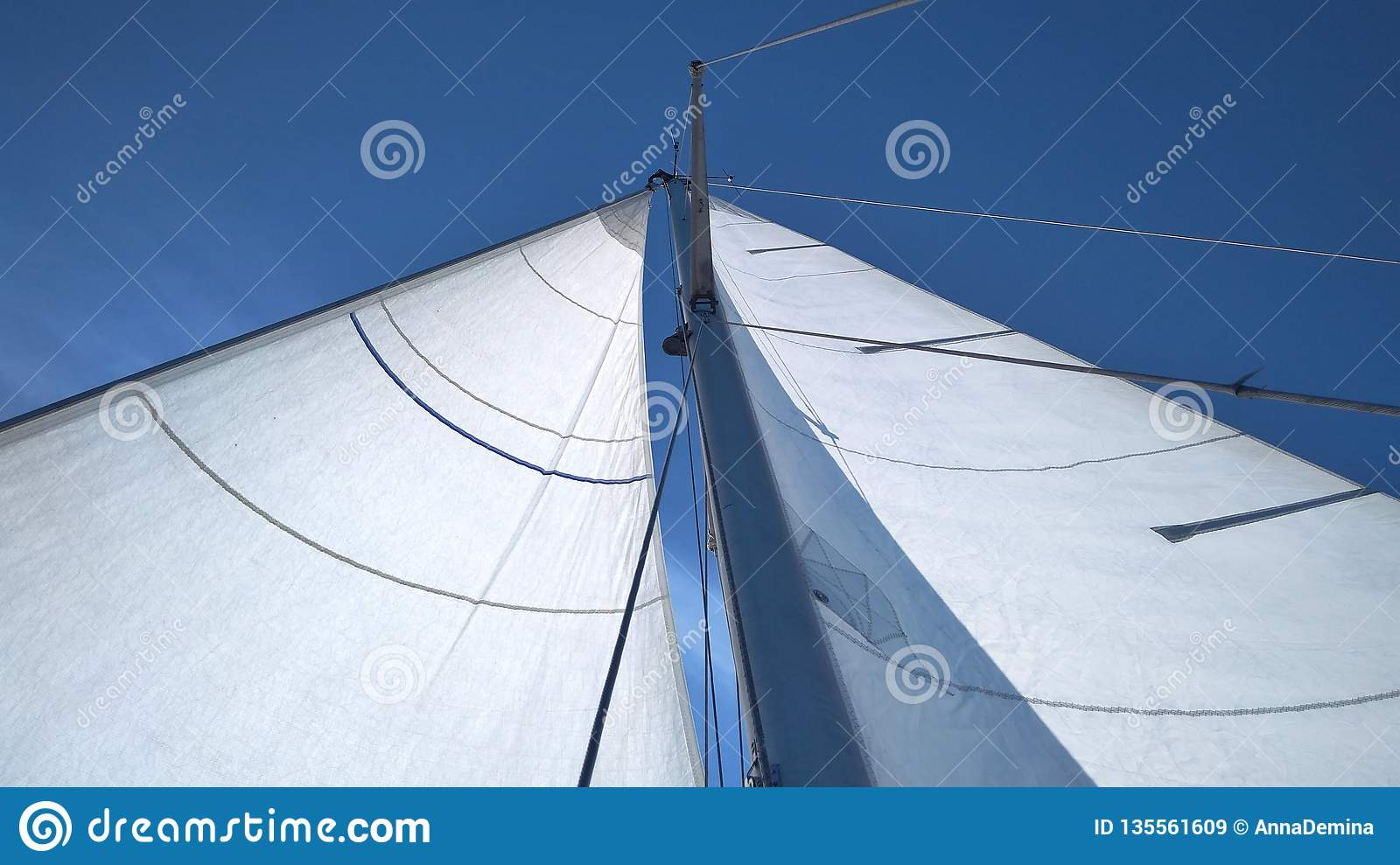 Snow-white sails against a clean bright blue sky on a sunny summer day