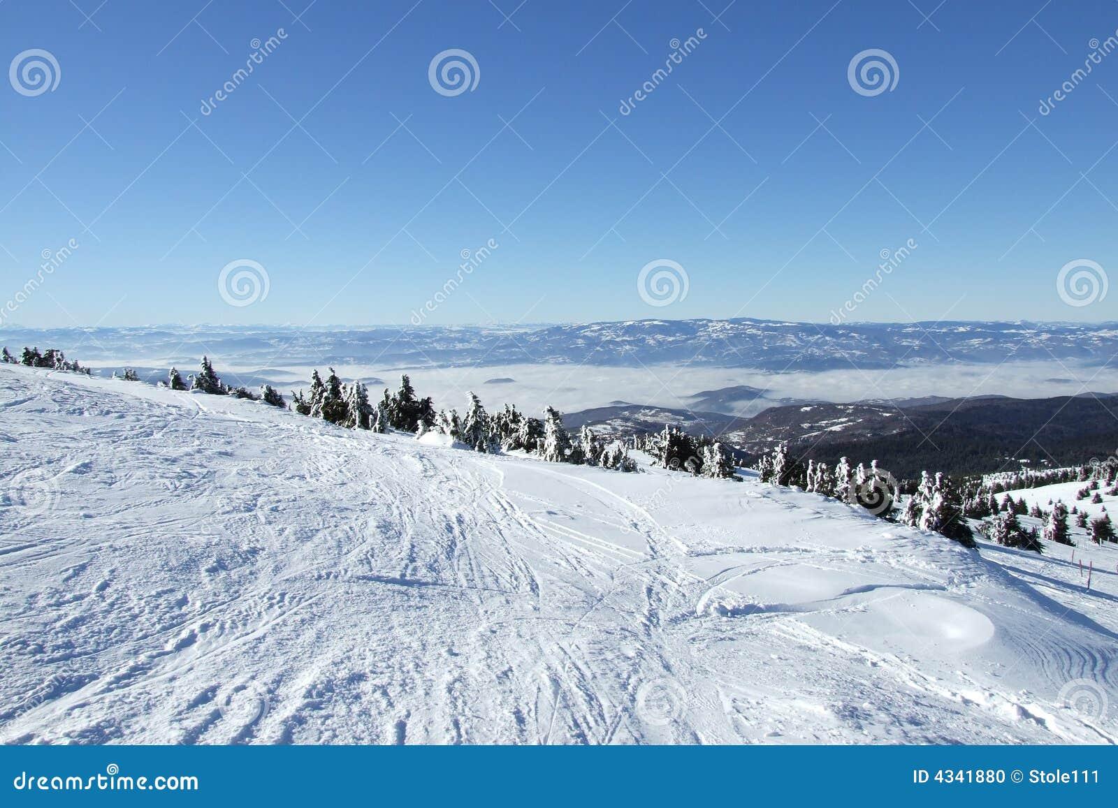 Snow winter scene on Kopaonik